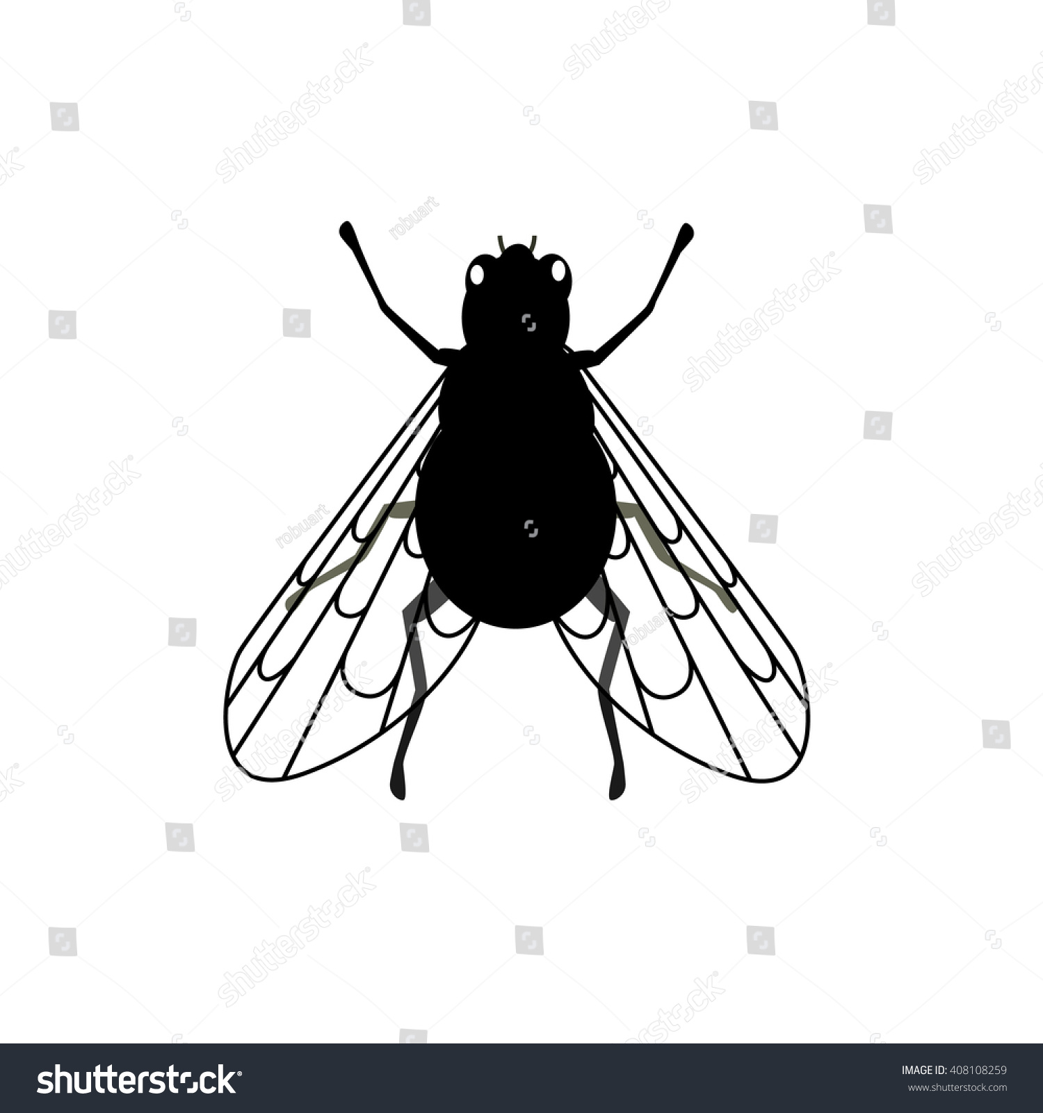 Small Black Flies In Kitchen Cheap 2 Bedroom Townhomes Makrillarnacom