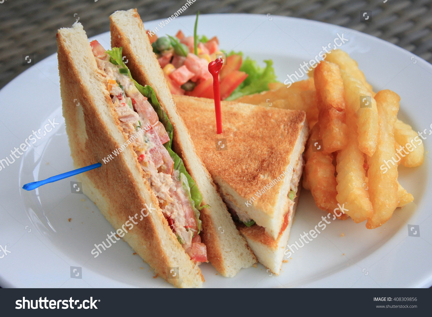 Aninimal Book: Tuna Sandwich Served With French Fries Stock Photo ...
