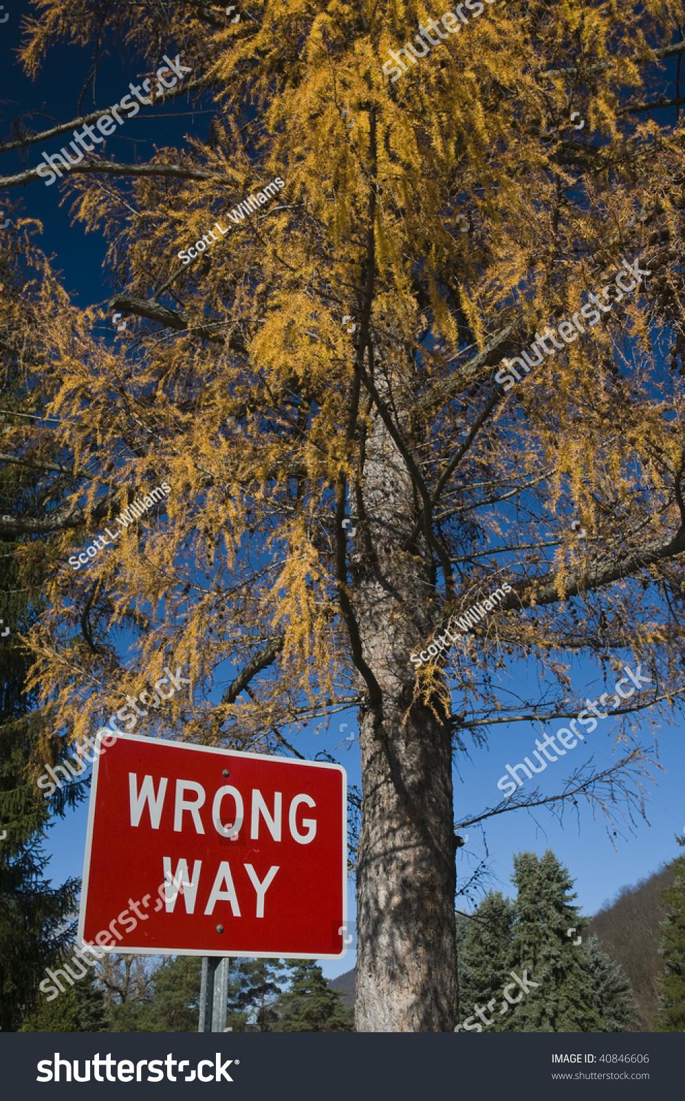 Traffic Sign Dead Tree Background Enviro Stock Photo Edit Now