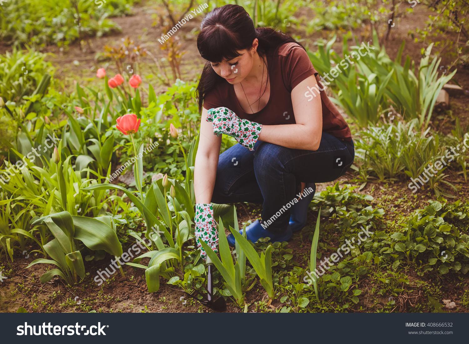 Young Woman Takes Care Plants Flowers Stock Photo Edit Now