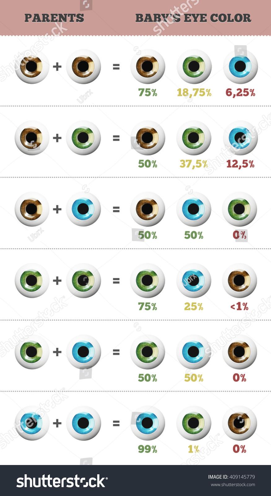 Baby eye color predictor likelihood eyes stock illustration baby eye color predictor likelihood of eyes color of the baby 3d illustration nvjuhfo Choice Image