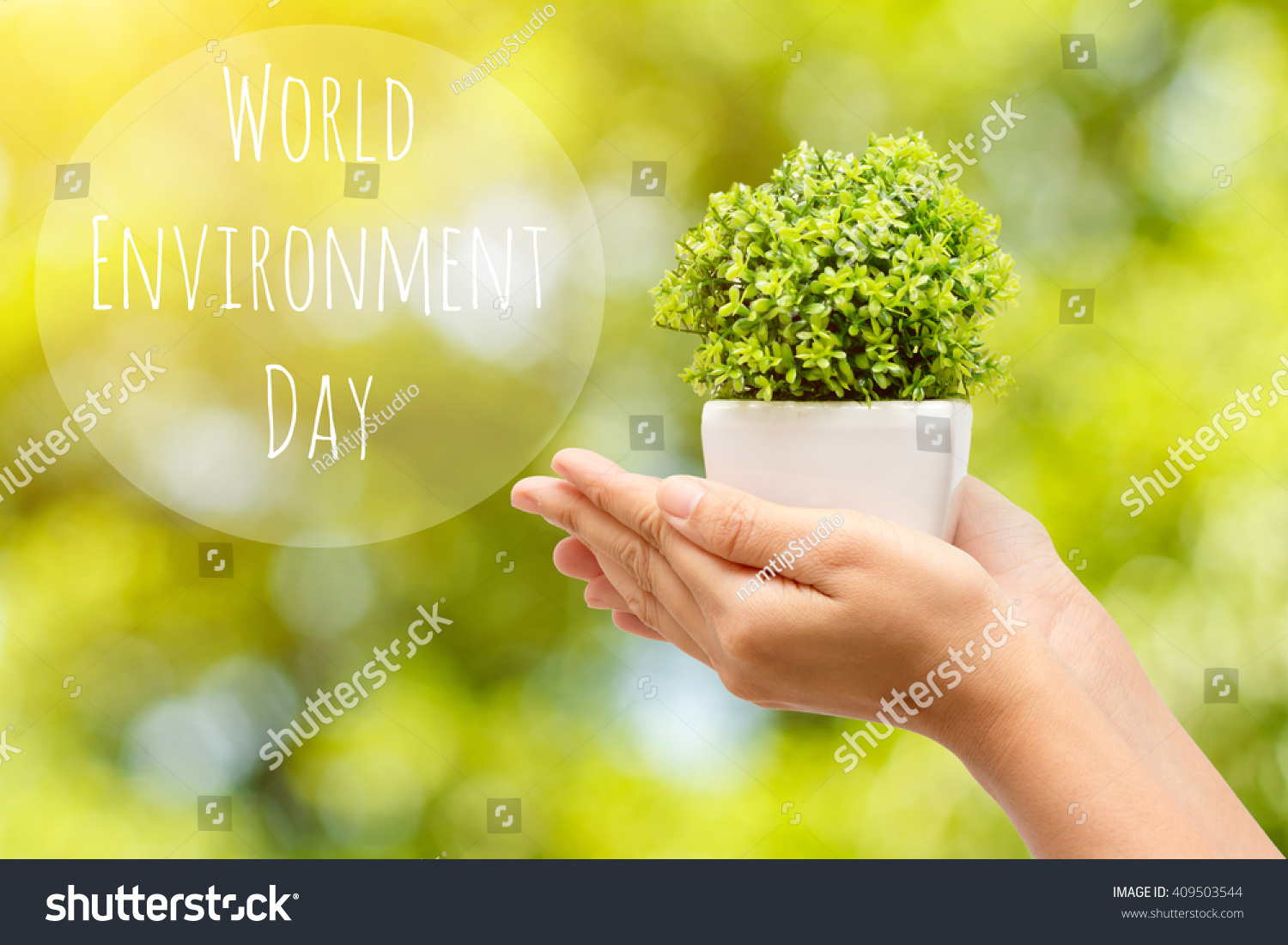 Concept World Environment Day Woman hands in jardiniere on a natural background and text World Environment Day