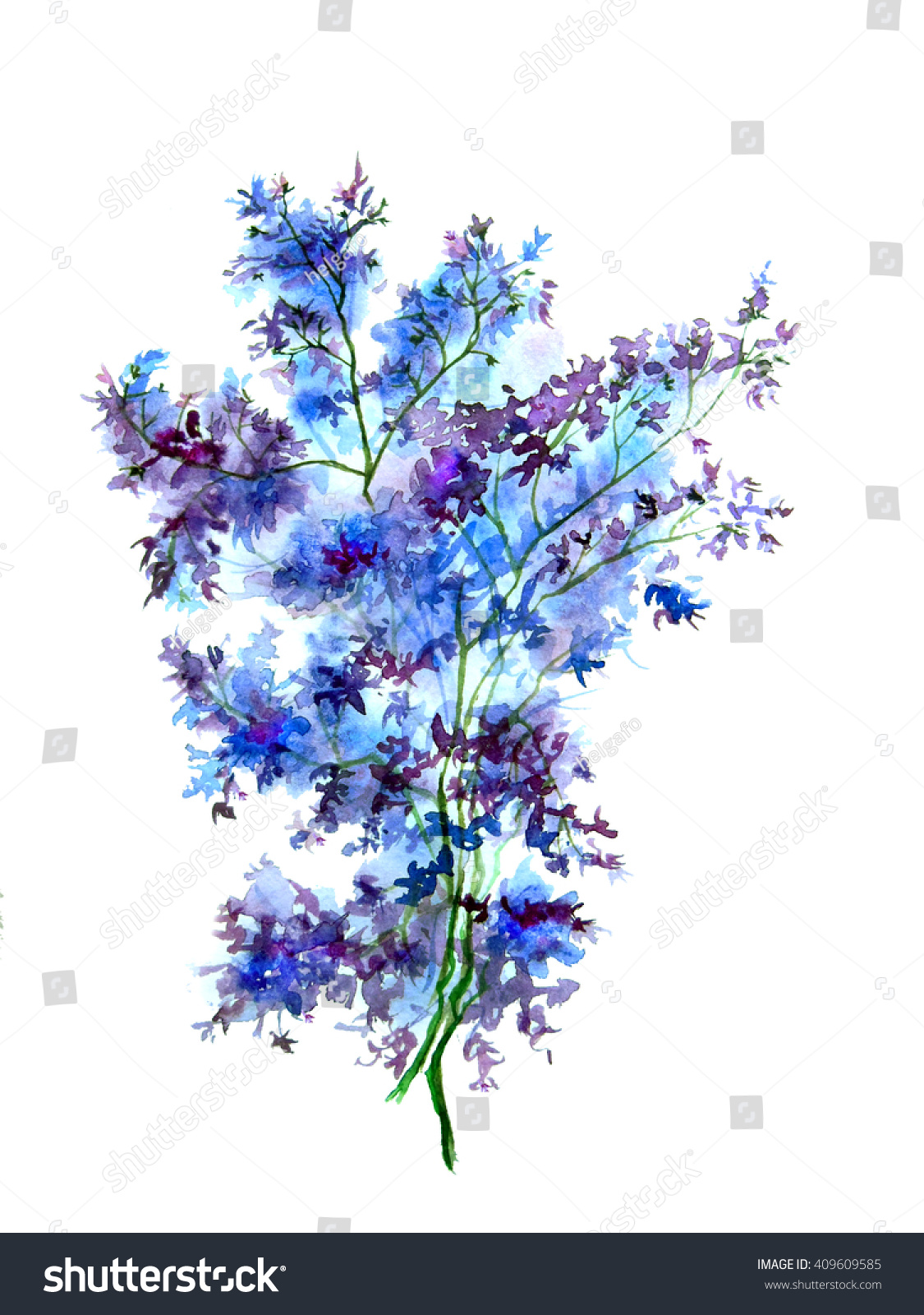 Blue Flower Field Garden Plant Watercolor Stock Illustration