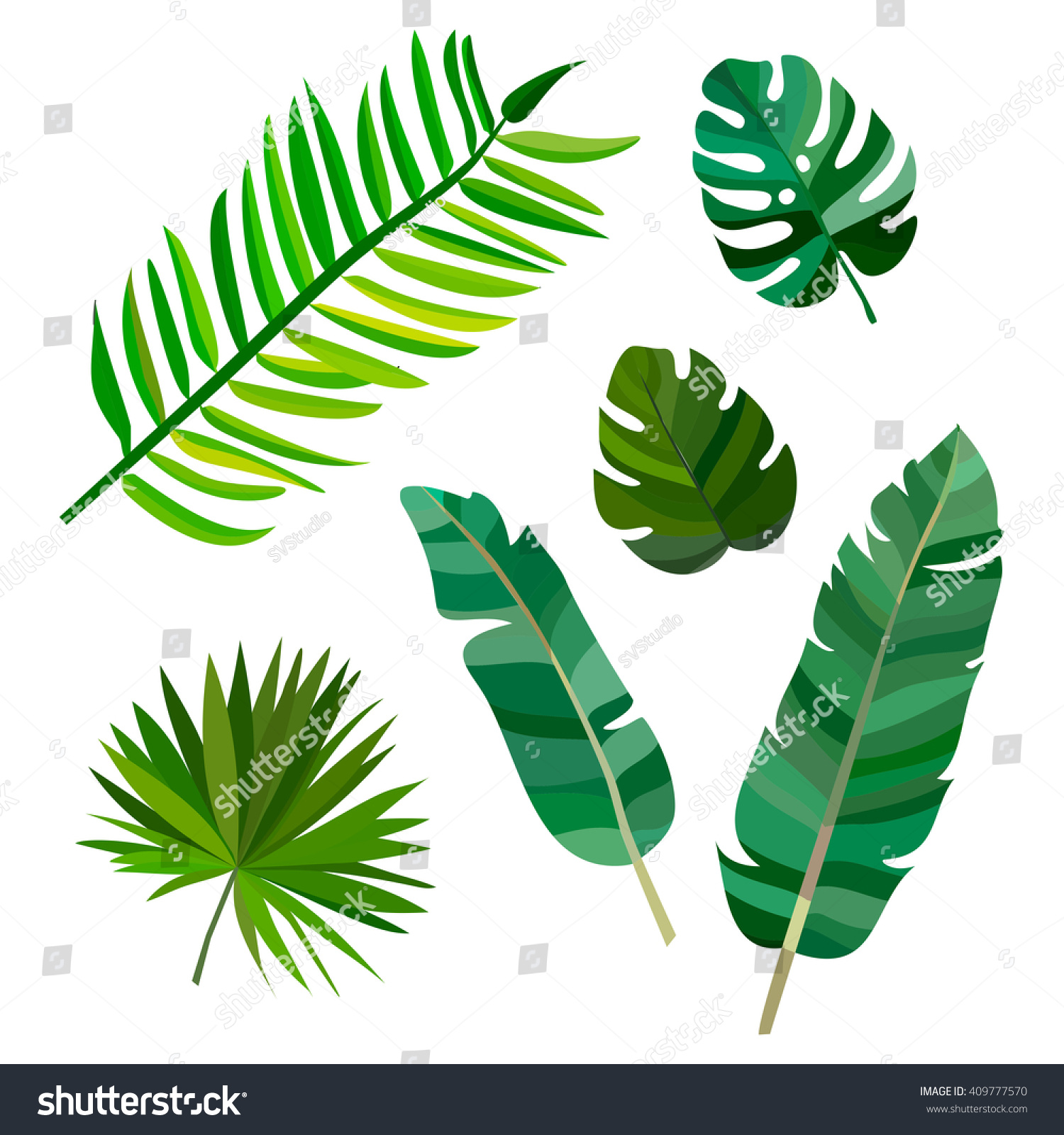 set green palm leaves hawaii on stock vector royalty free