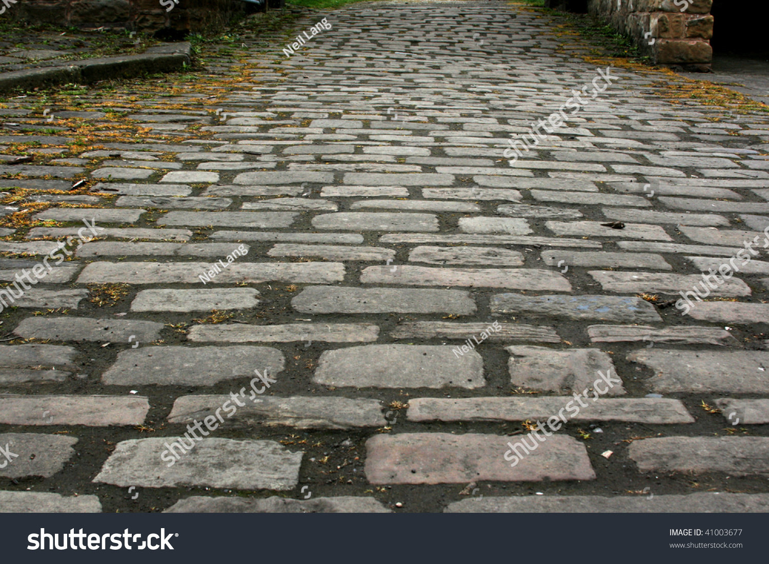 Cobblestone Path Stock Photo 41003677 Shutterstock