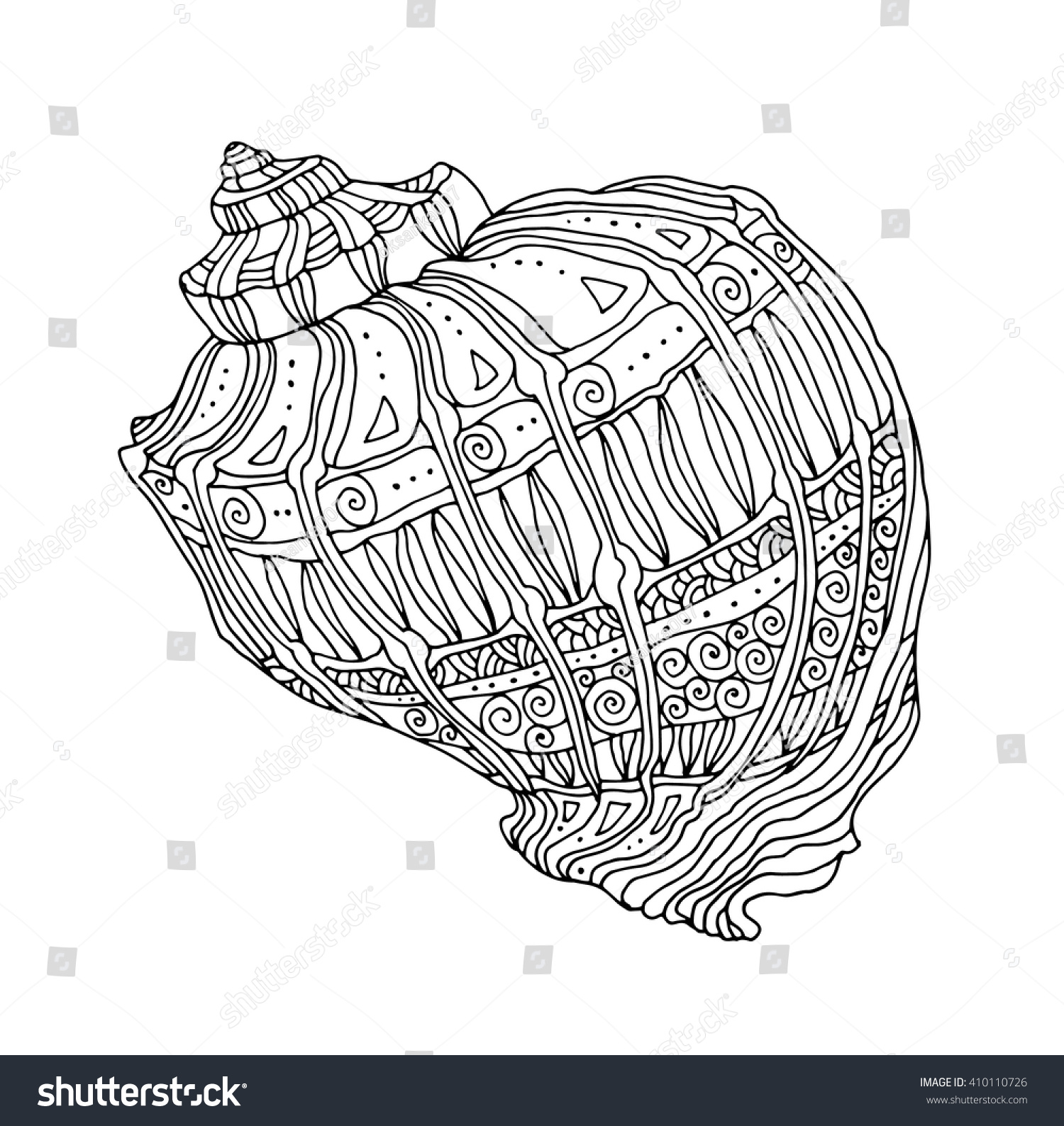 seashell isolated seashell vector illustration zentangle stock