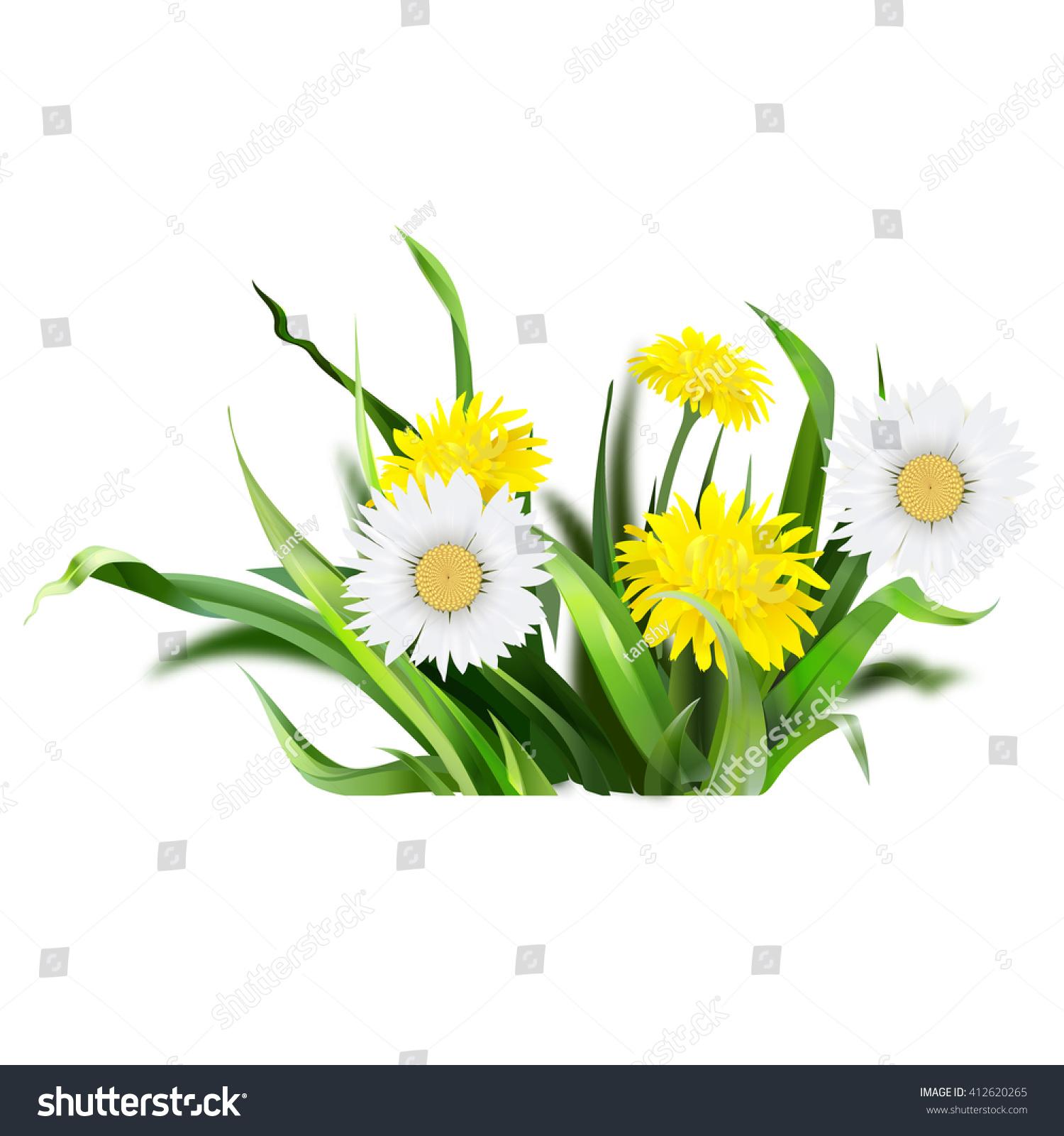 Royalty Free Dandelion Green Grass Yellow Flower 412620265 Stock