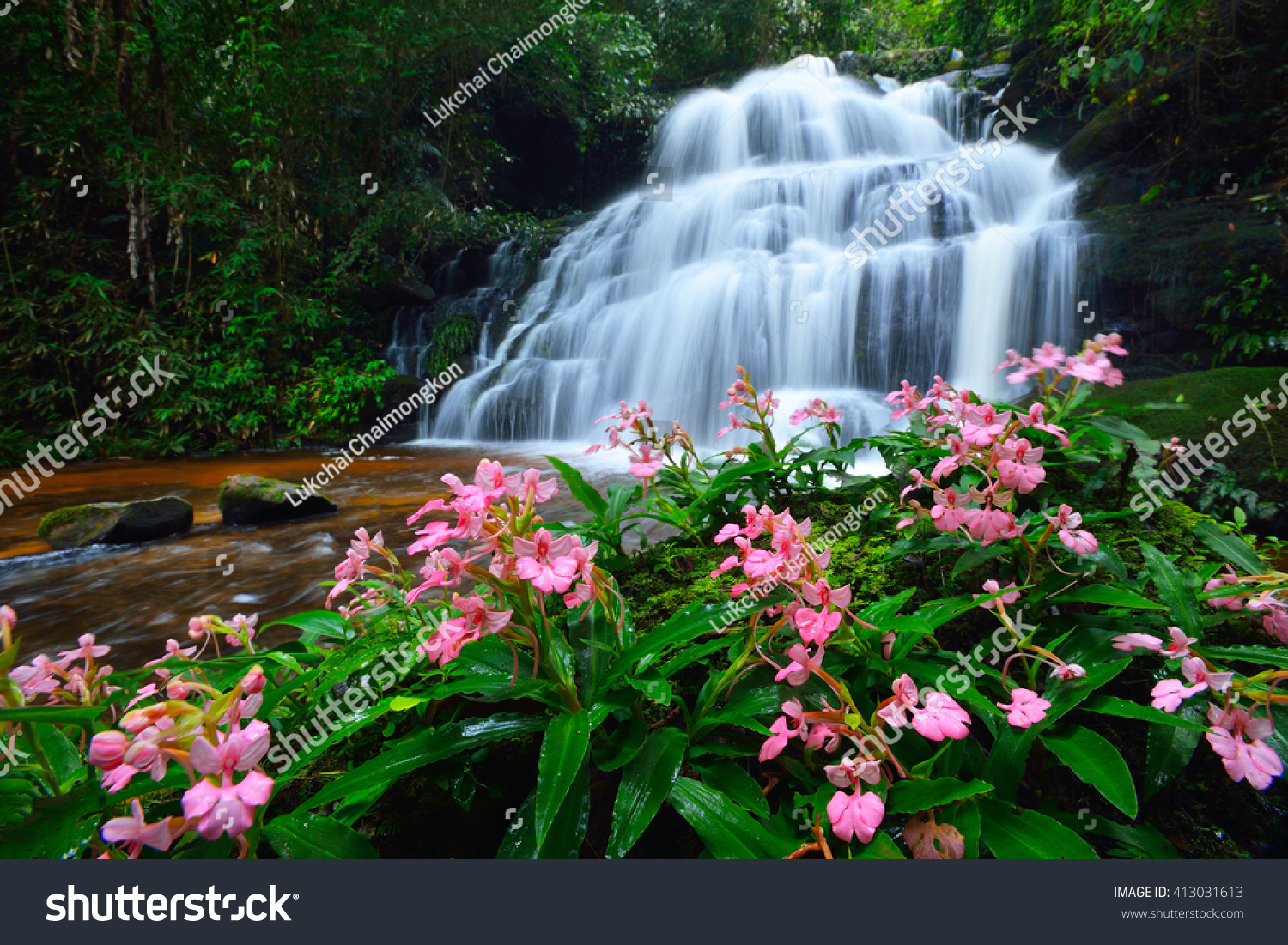 Mun Dang waterfall and dragonflowers it's waterfall in the rainforest in Thailand