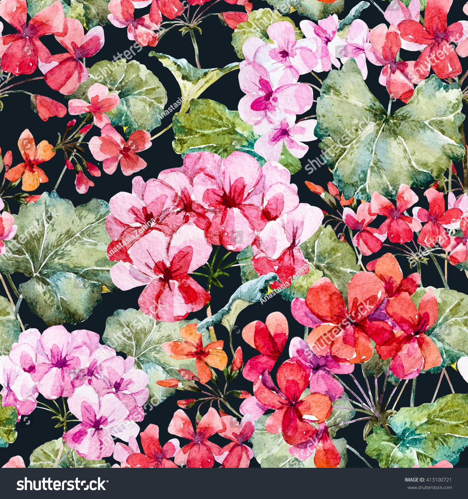 Watercolor Floral Pattern Geranium Dark Background Stock