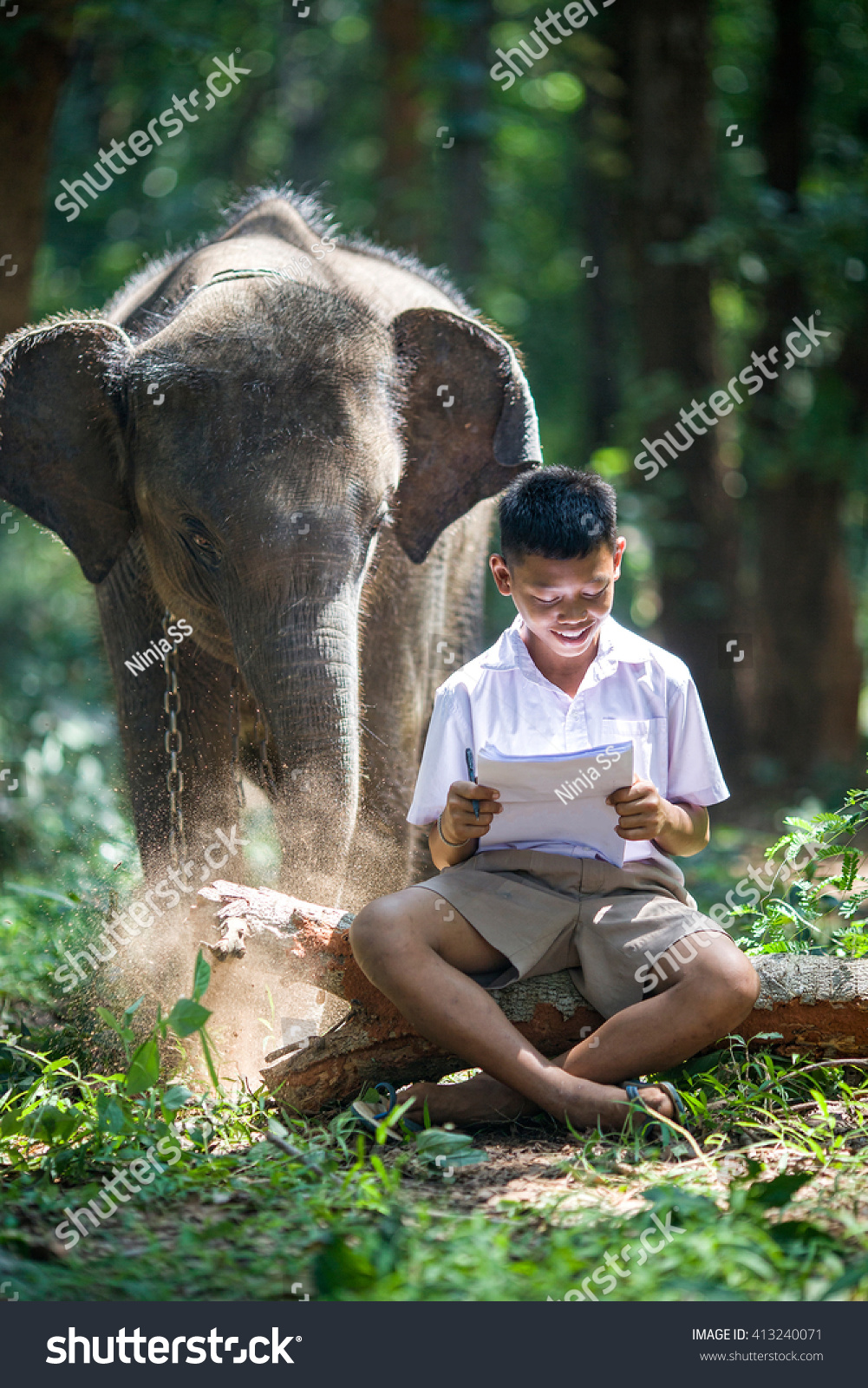asian boy reading book on his stock photo 413240071 shutterstock