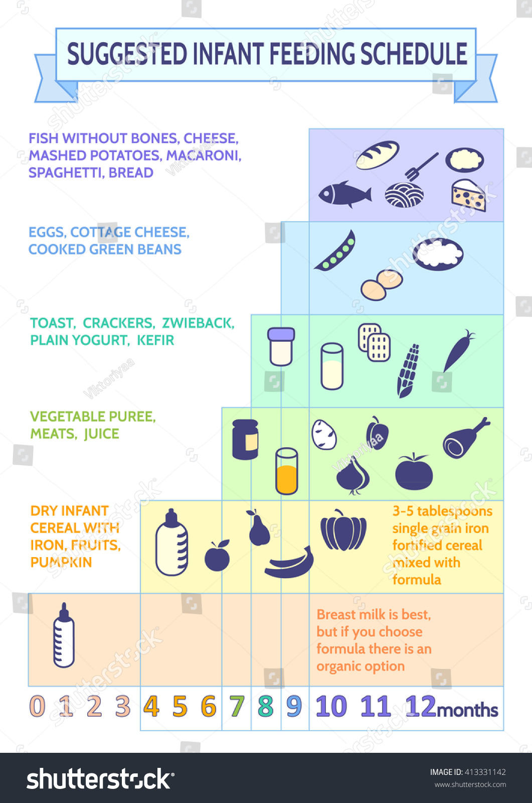 Detailed Information On Baby Food Infographicbabys Stock
