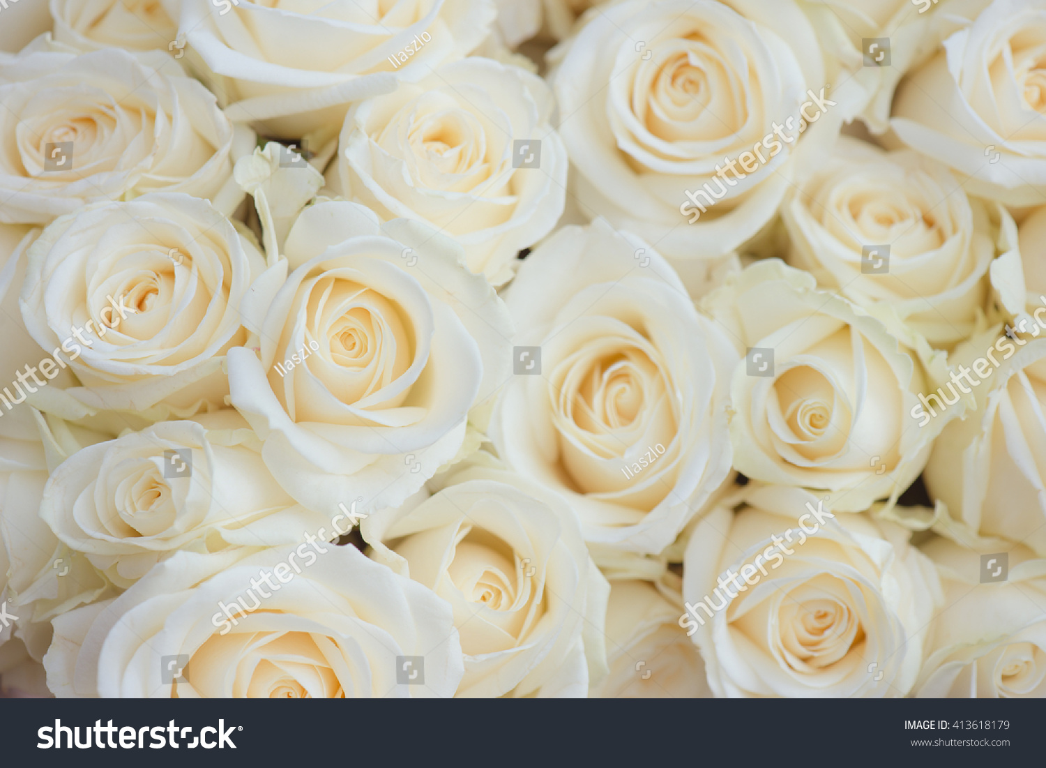 Royalty Free Wedding Bouquet Of White Flowers White 413618179