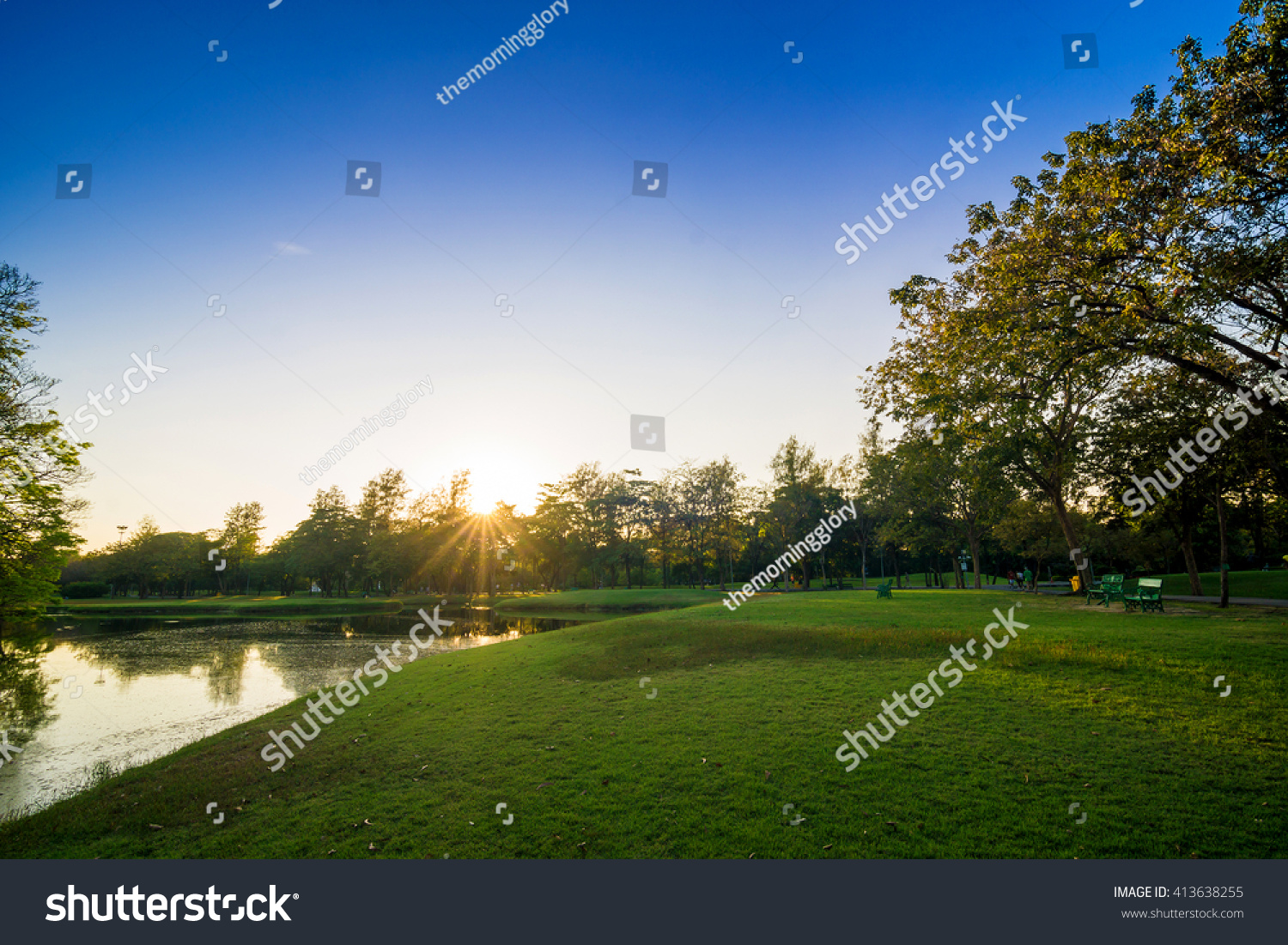 Green trees in beautiful park over blue sky in evening Green garden
