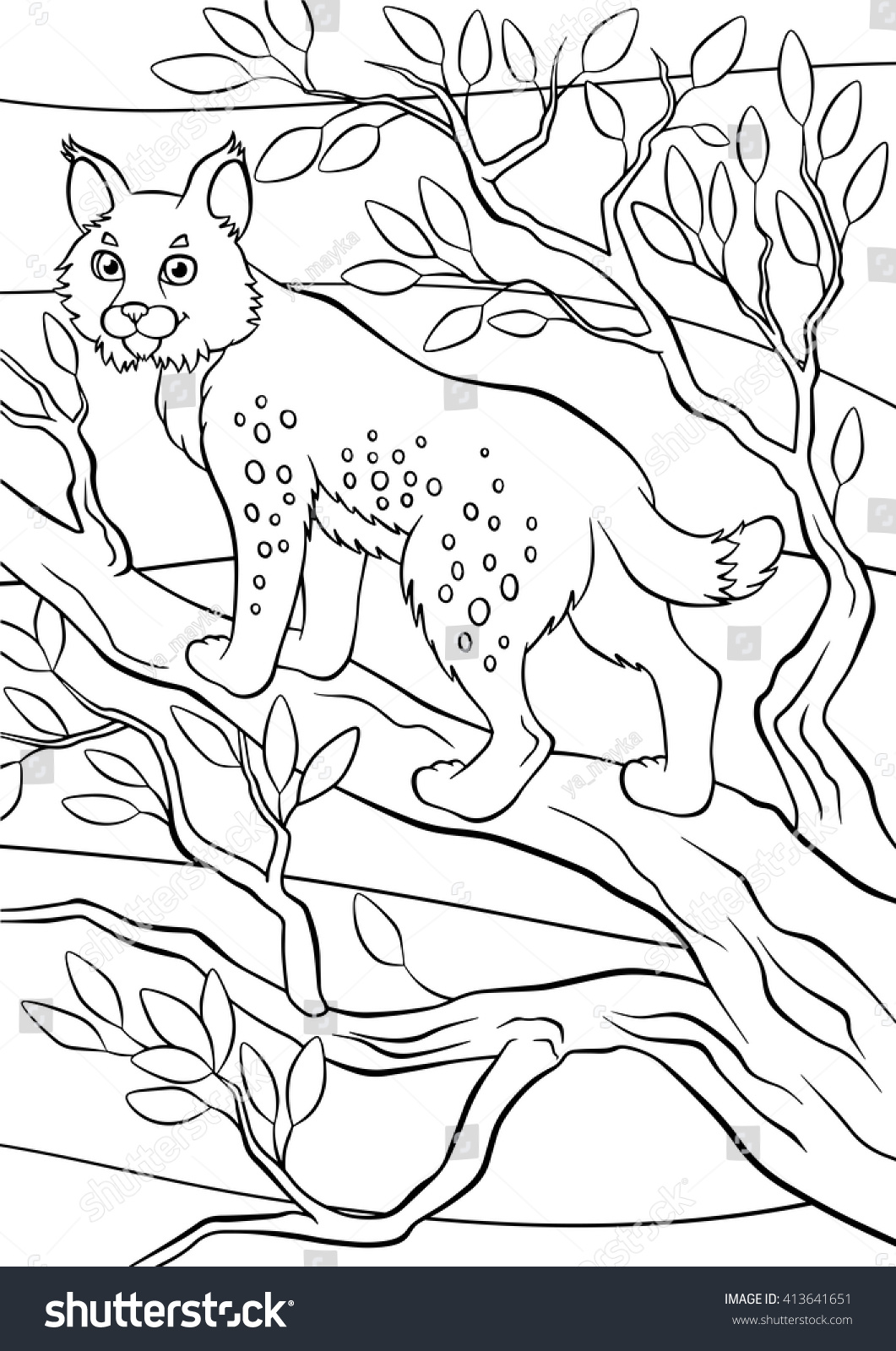 coloring pages animals little cute lynx stock vector 413641651