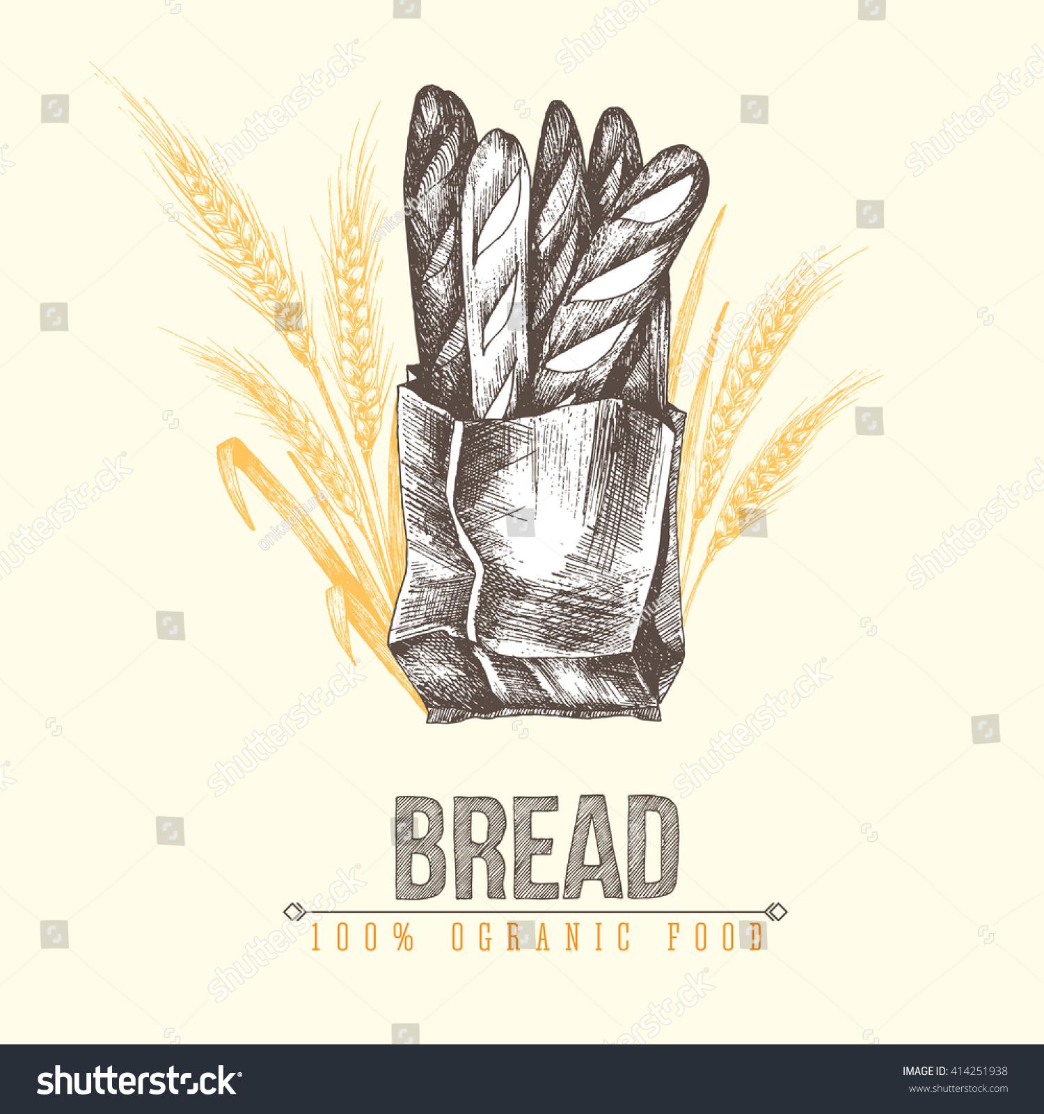 Paper bag sketch - Fresh Baked Baguette Packed In Ecological Paper Bag Vector Hand Drawn Sketch Illustration Of Five