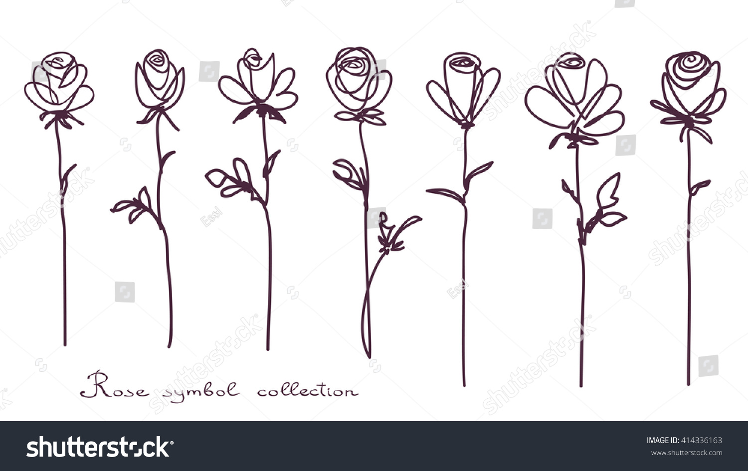 Roses Collection Isolated Rose Flower Sketch Vector De Stock Libre Line Diagram Simple Drawing Of Bud On White Background The Continuous Doodled
