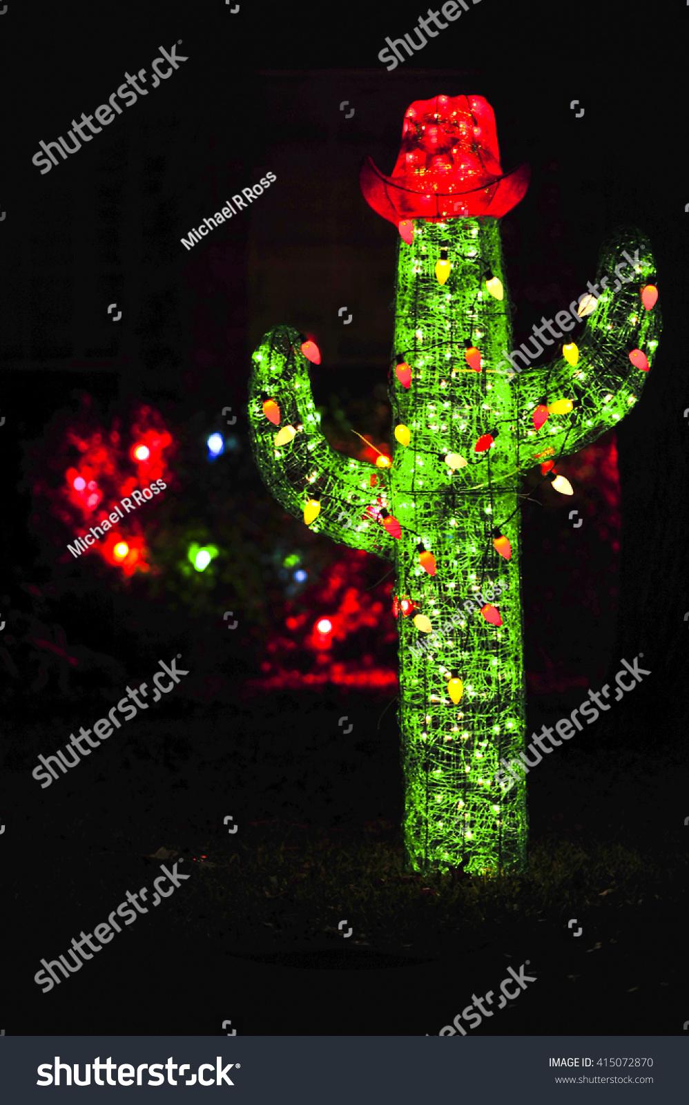 cactus christmas lights blurry