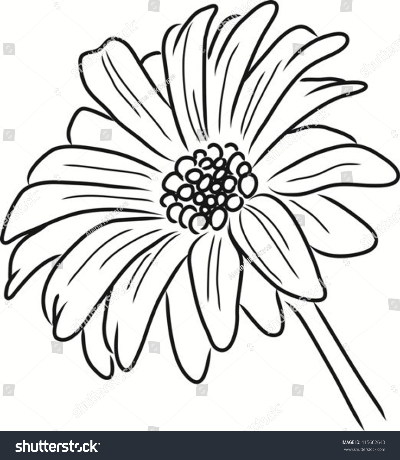 Daisy flower vector outline ink drawing stock vector royalty free daisy flower vector outline ink drawing sketch single flower izmirmasajfo