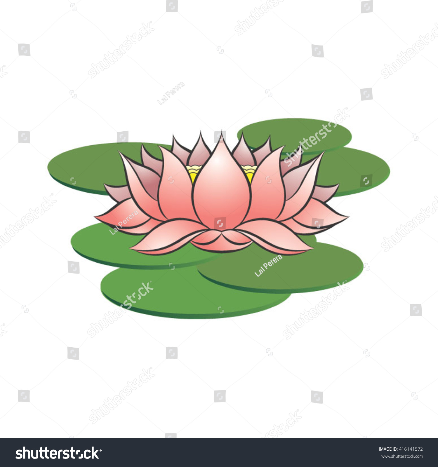 Pink Color Lotus Flower On Leaves Stock Vector Royalty Free