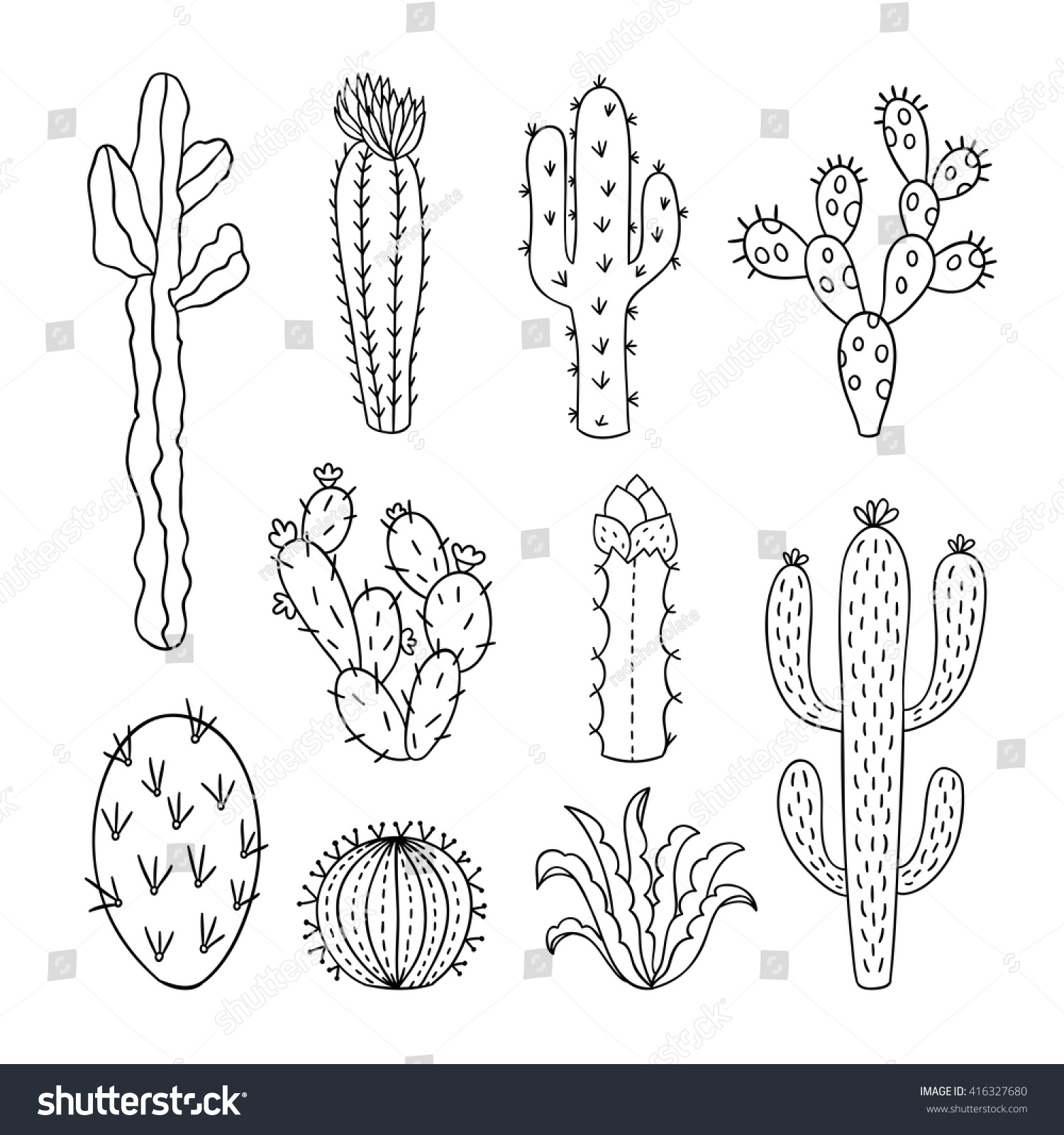 Cactus Vector Illustrations Hand Drawn Outline Stock