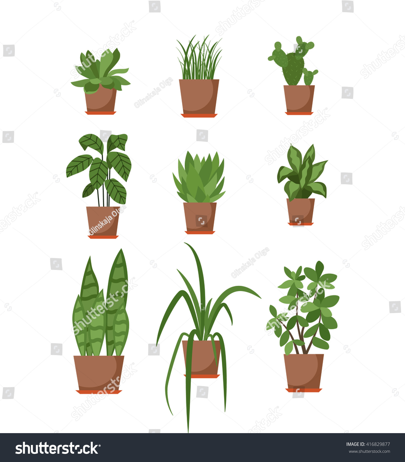 Set House Plant Isolated Vector Flat Stock Vector