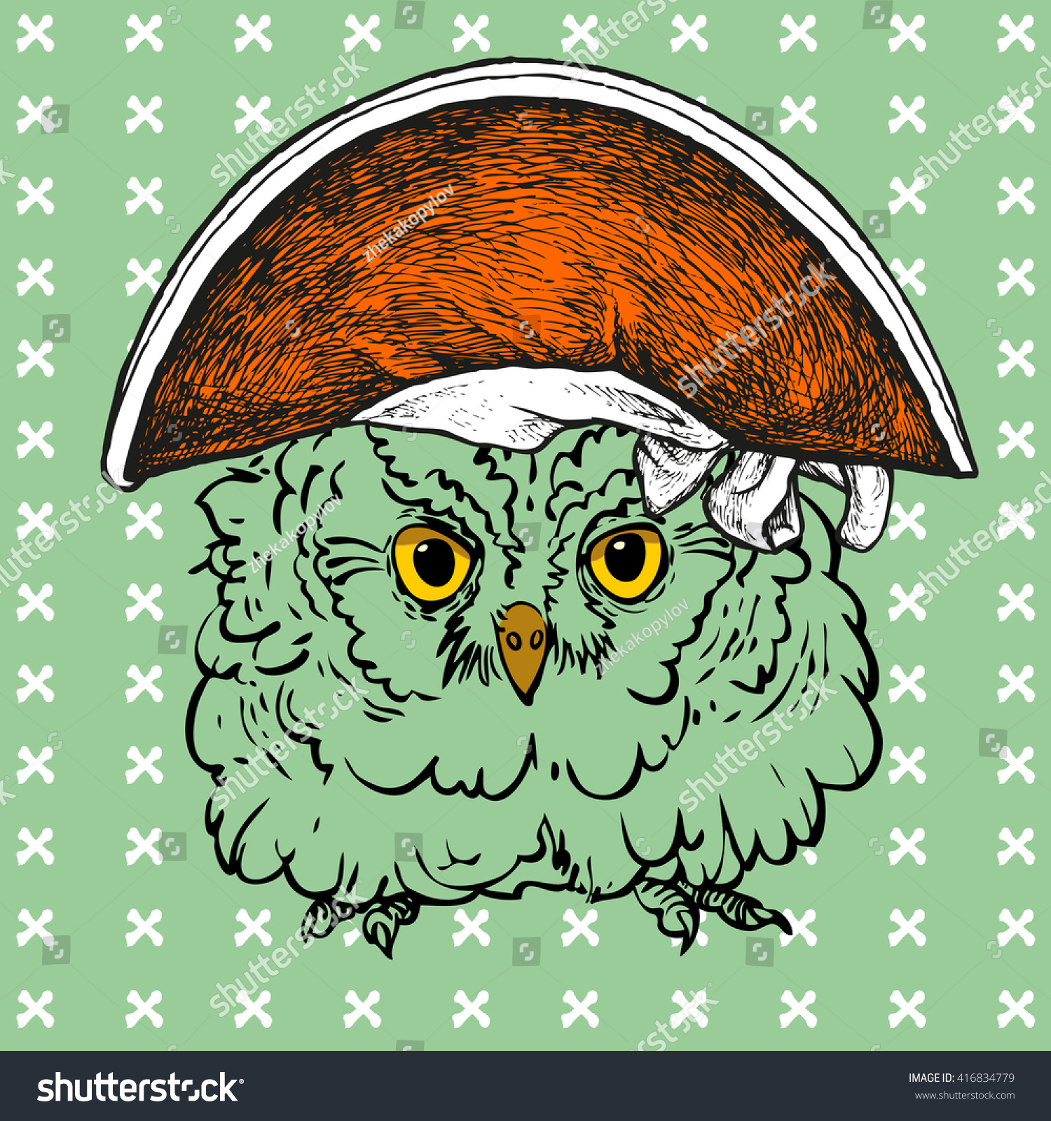 Pop art owl pirate hat can stock vector 416834779 shutterstock stopboris Gallery