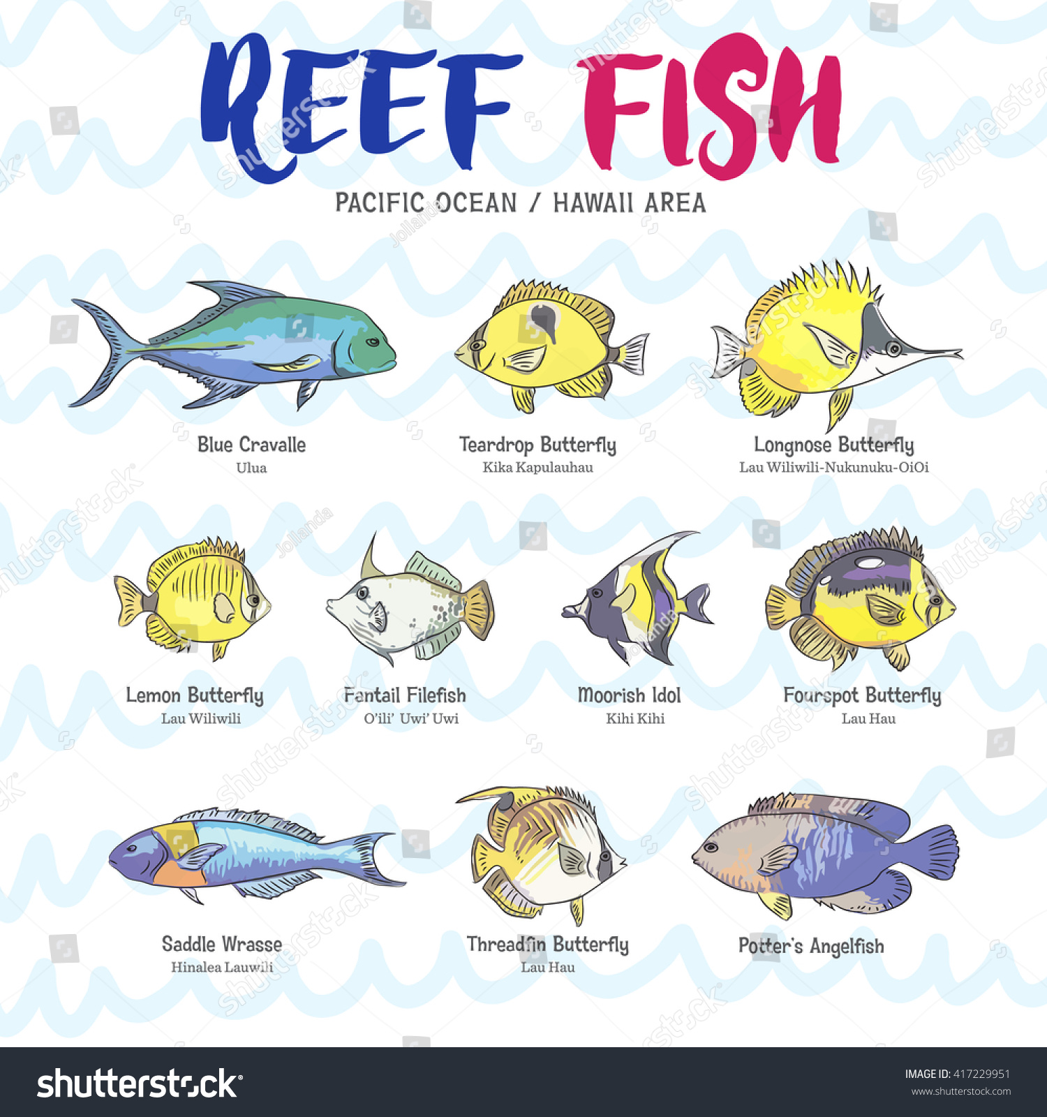 248 Names You Can Give Your Pet Fish  thesprucepetscom
