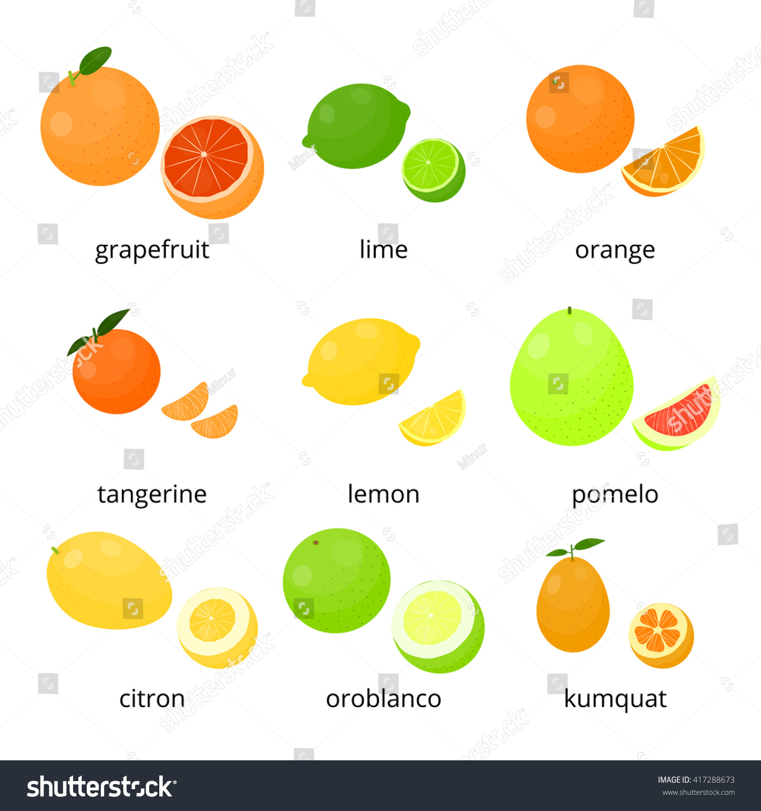 How to Tell a Lemon From a Lime Tree  Home Guides  SF Gate