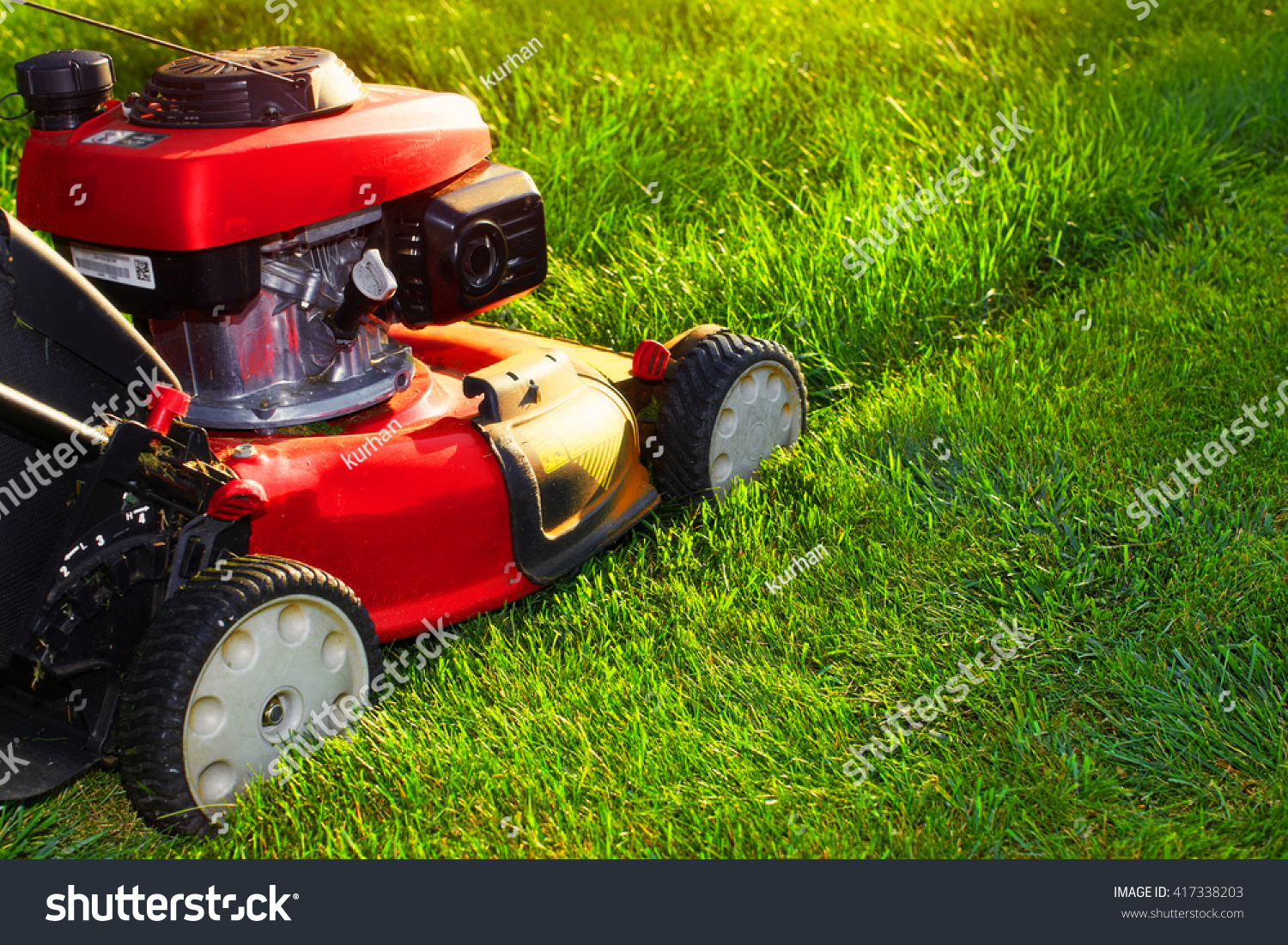 Looking after your lawn for How often should you mow your lawn