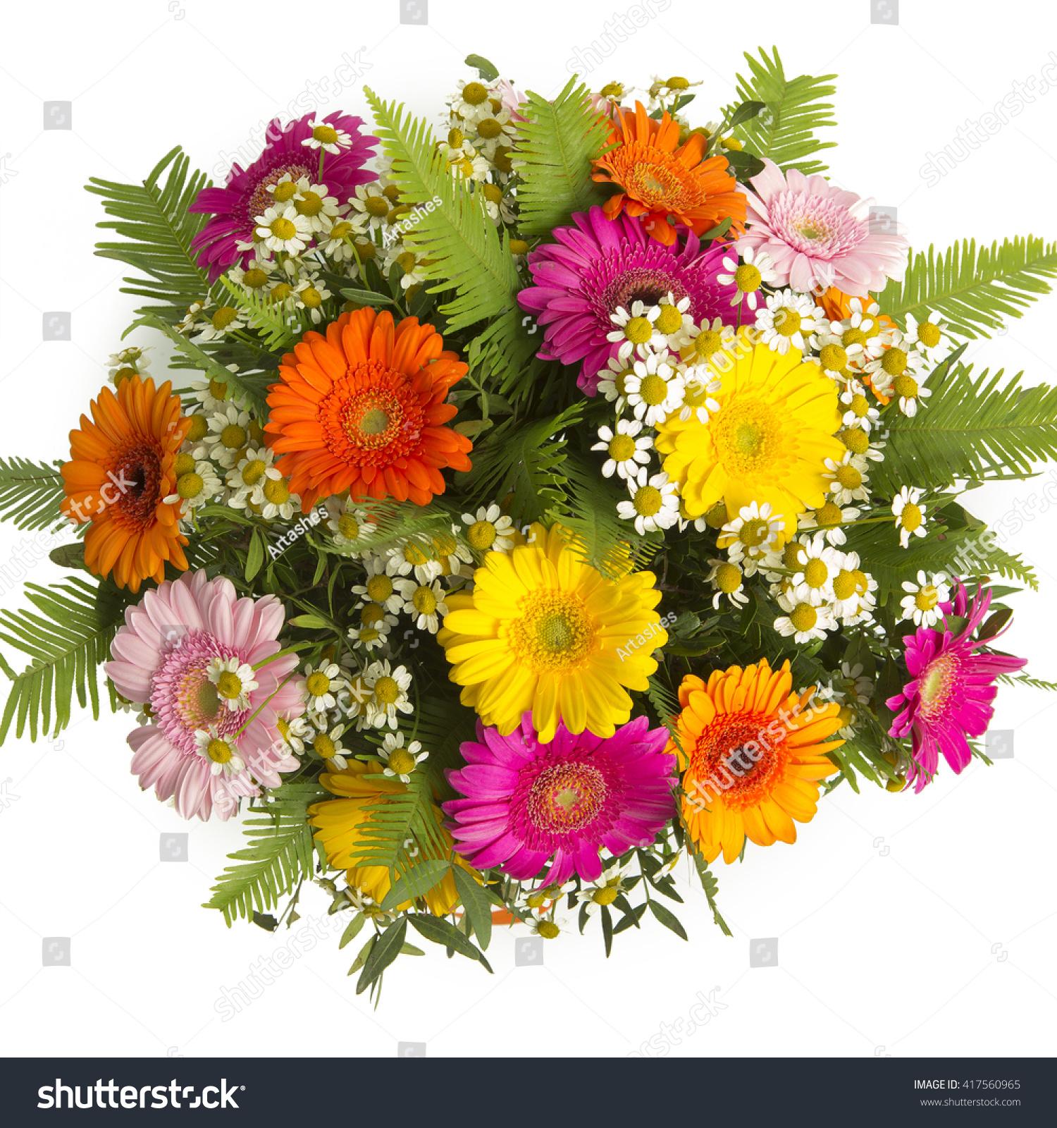 Colorful Bouquet Gerberas Wild Flowers Stock Photo (Edit Now ...