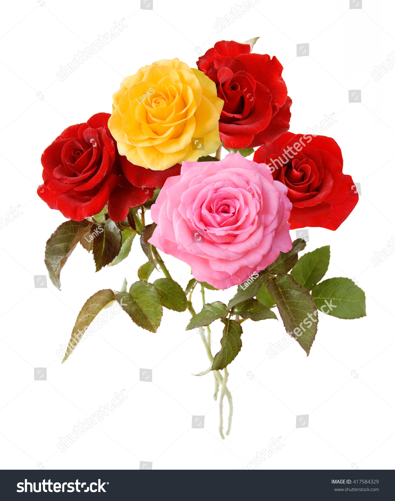 Red Yellow Pink Rose Flowers Bunch Stock Photo Royalty Free