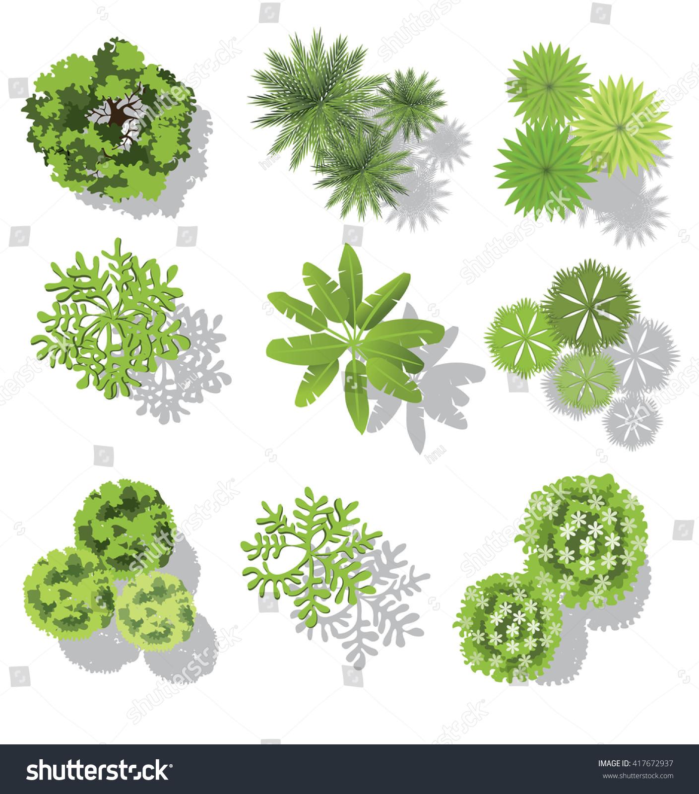 Set Of Treetop Symbols For Architectural Or Landscape Design For Map