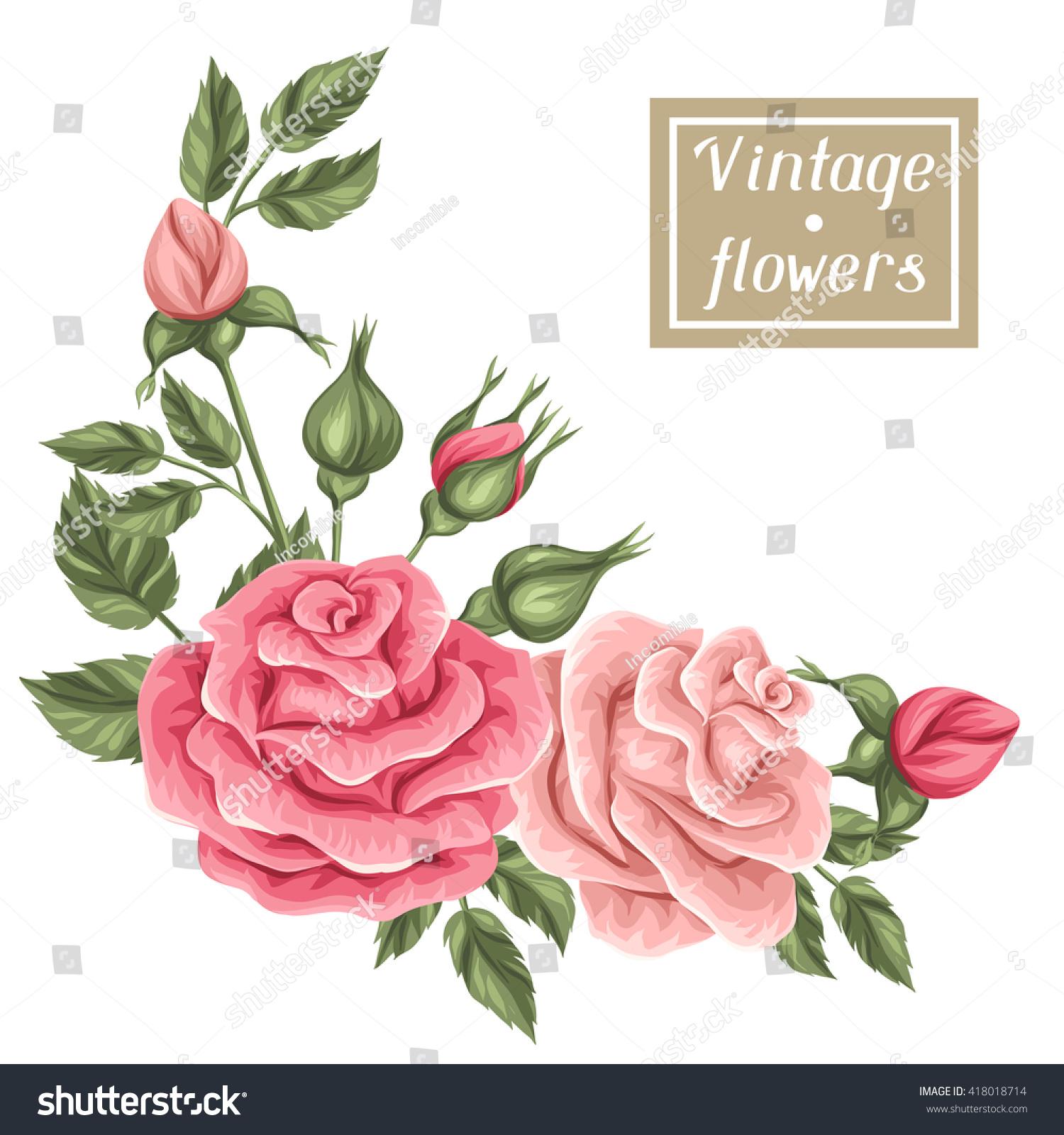 Floral Element Vintage Roses Decorative Retro Stock Vector Royalty