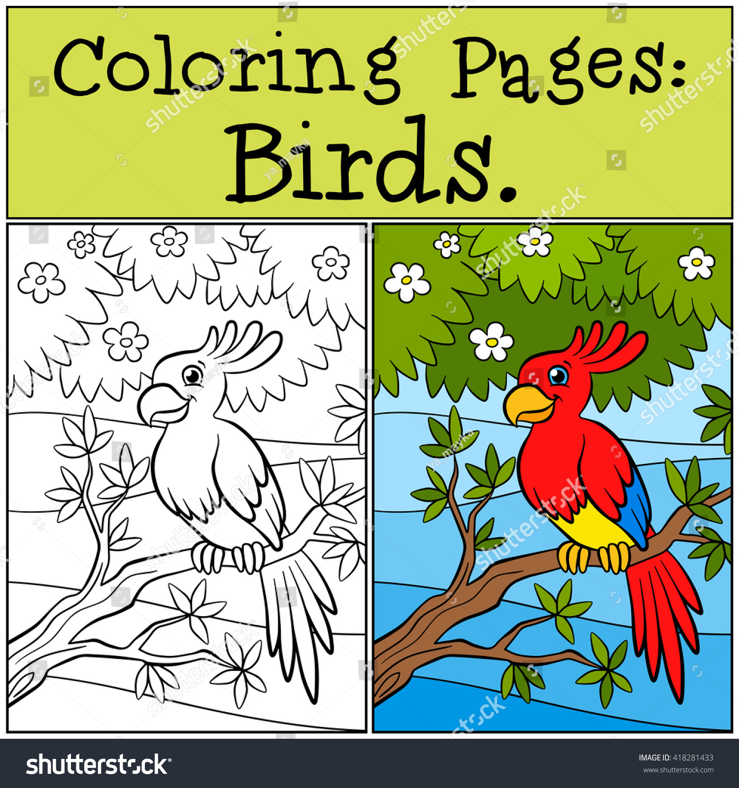 Coloring Pages Birds Little Cute Parrot Stock Vector 418281433 ...