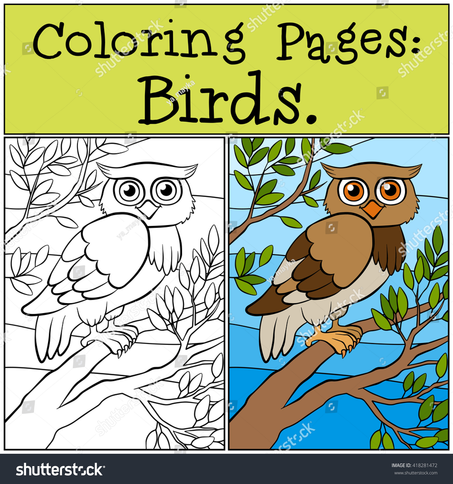 coloring pages birds little cute owl stock vector 418281472