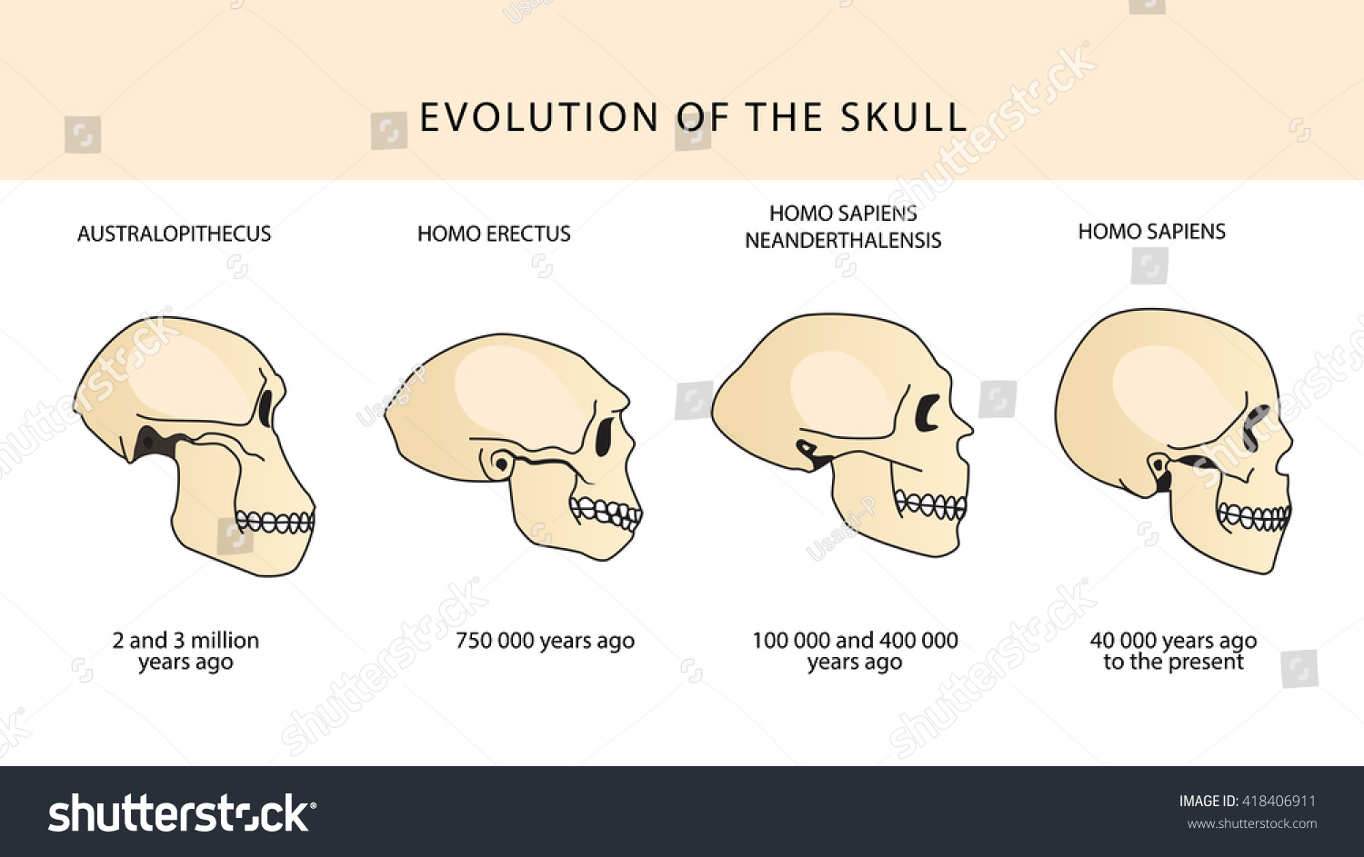skull dating site Email or skout id password log in .