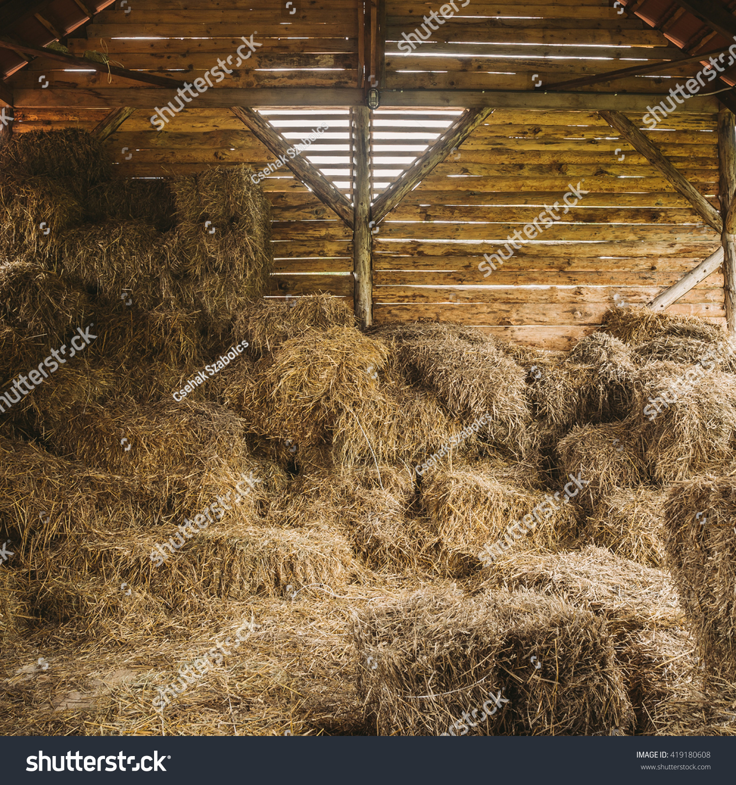 dry hay stacks rural wooden barn stock photo 419180608 shutterstock dry hay stacks in rural wooden barn interior
