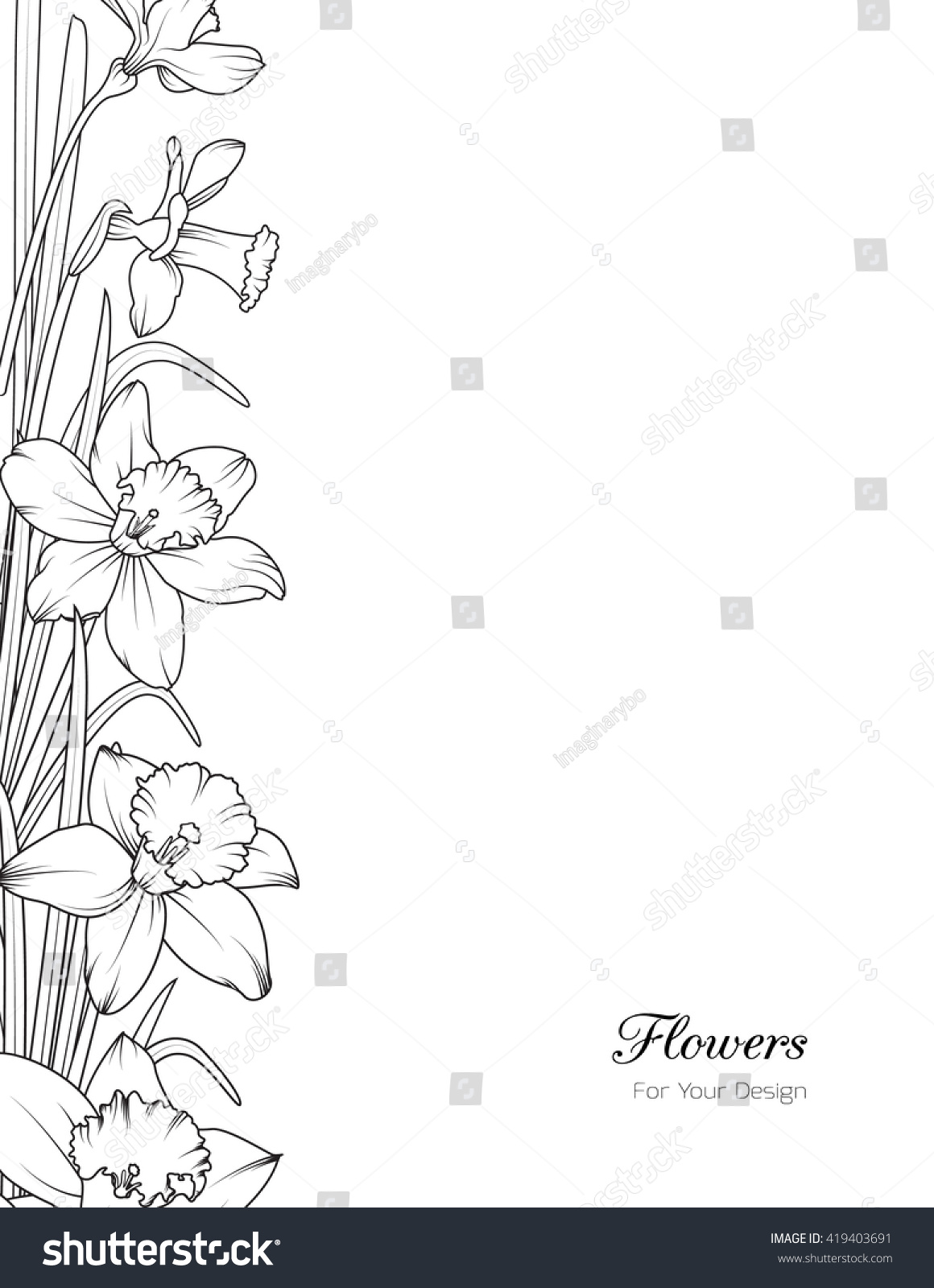daffodils narcissus spring flowers vertical layout stock vector