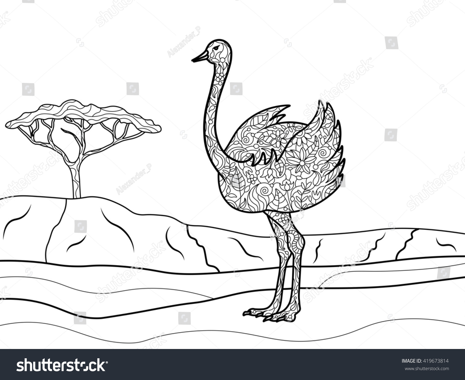 Ostrich Bird Coloring Book For Adults Raster Illustration Black And White Lines Lace Pattern