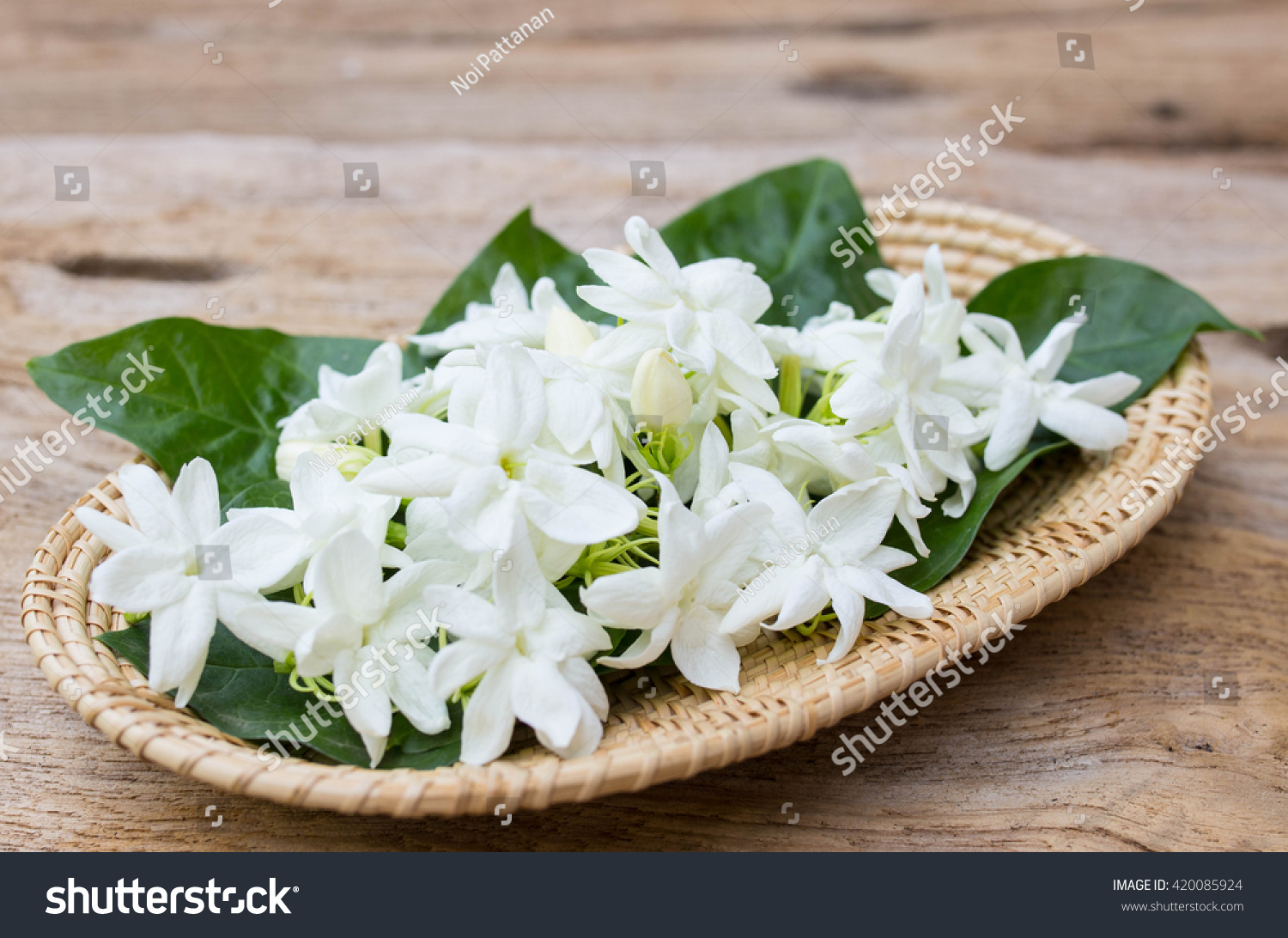 Jasmine Flowers Basket On Wooden Background Stock Photo Edit Now