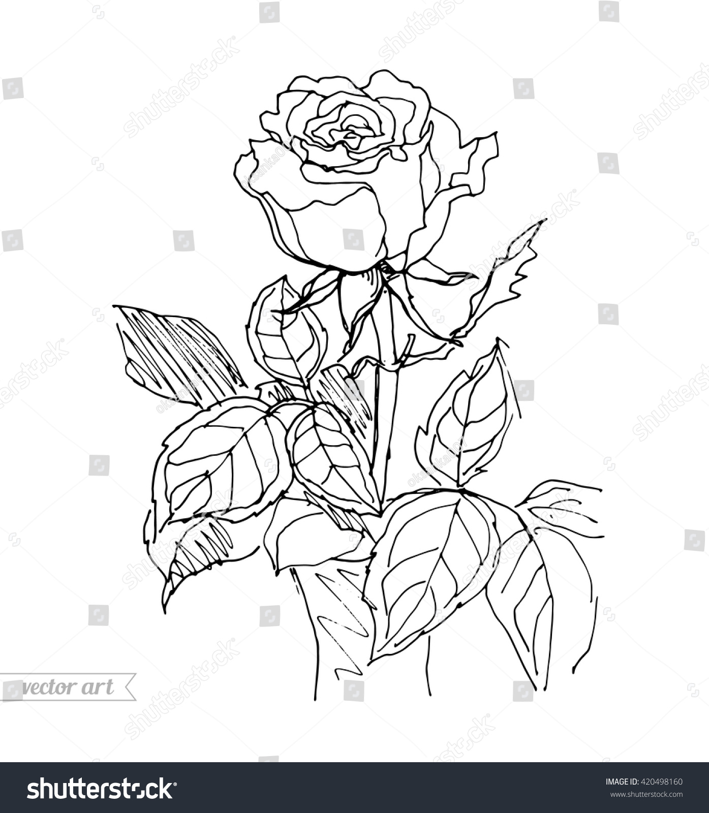 rose in vase isolated rose in pot vector sketch artwork coloring book page