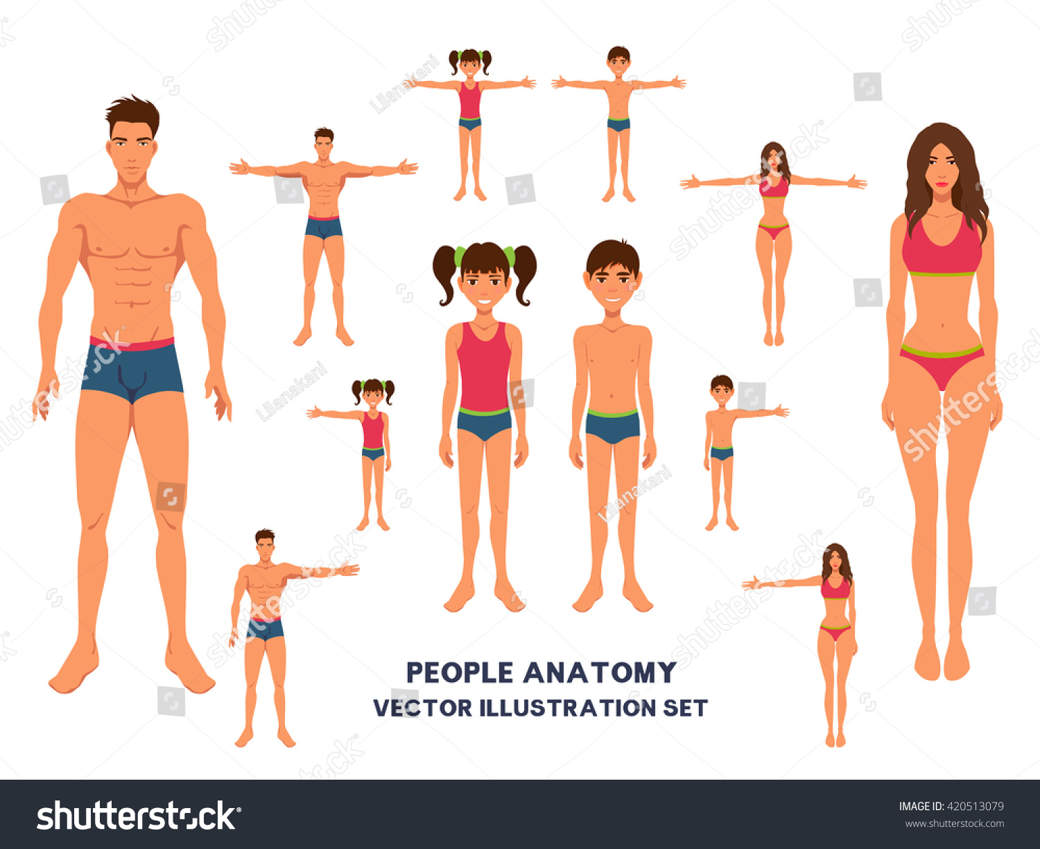 Anatomy Fulllength People Bodies Set Family Stock Vector 420513079