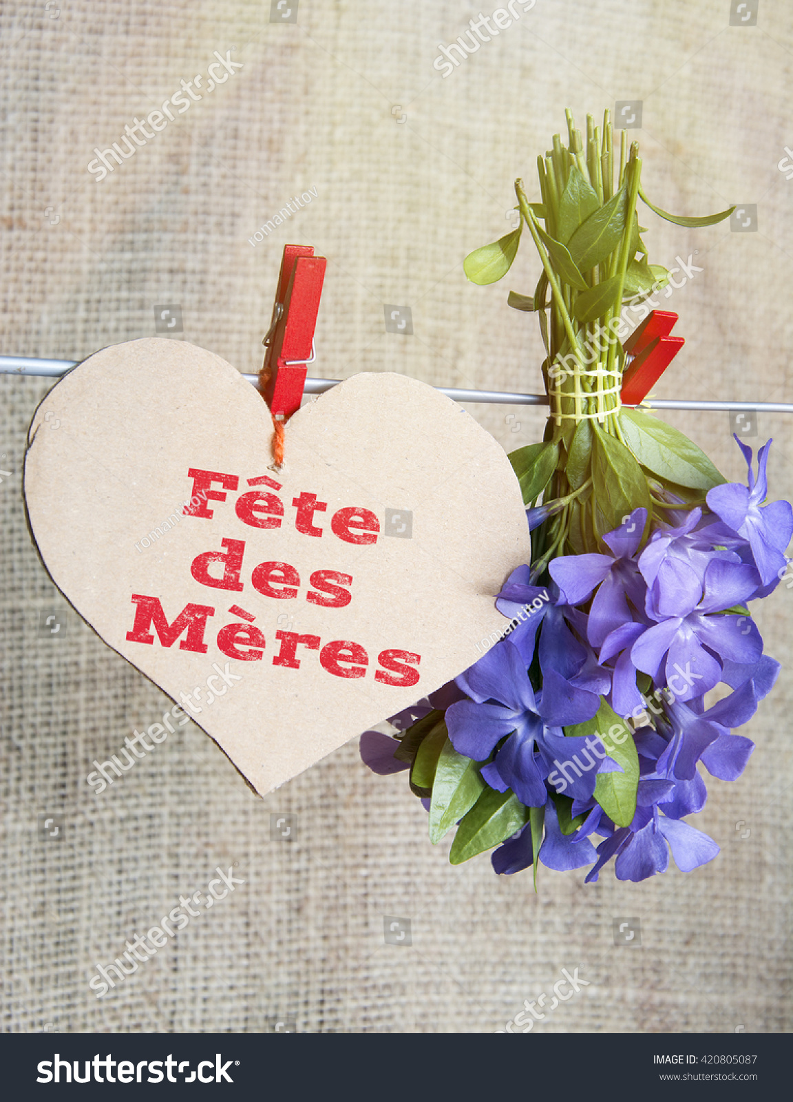 Mothers Day French Flower Bouquet Romantic Stock Photo 420805087 ...