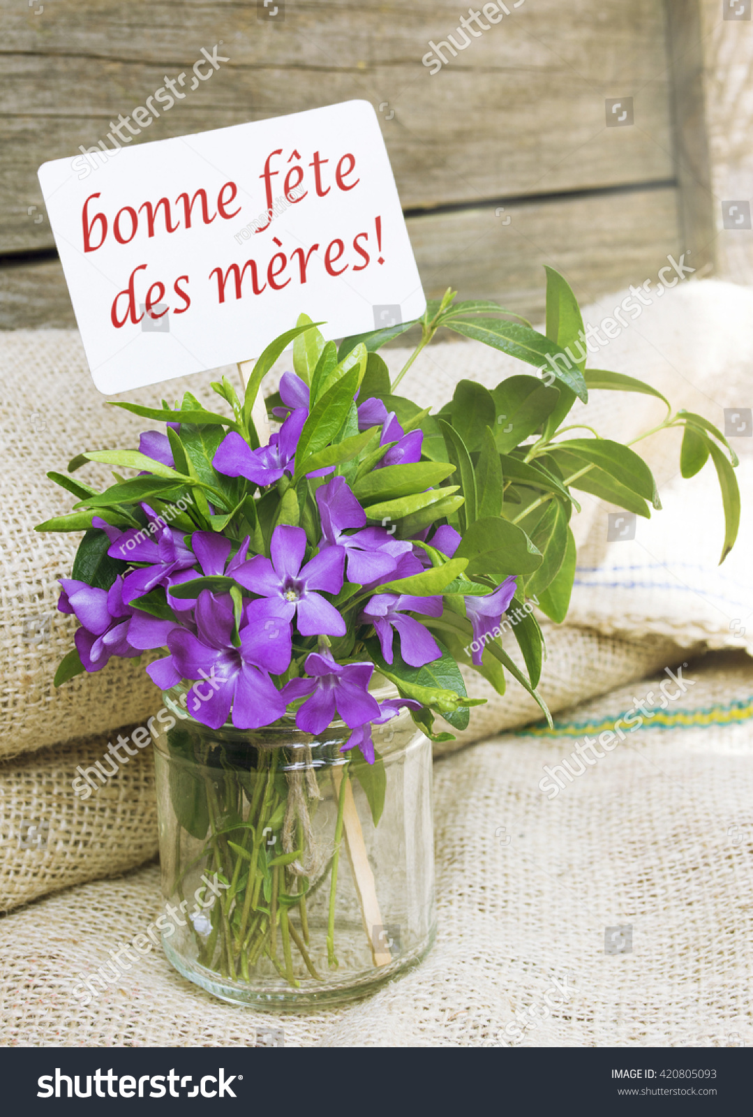 Enjoy Mothers Day French Flower Bouquet Stock Photo 420805093 ...