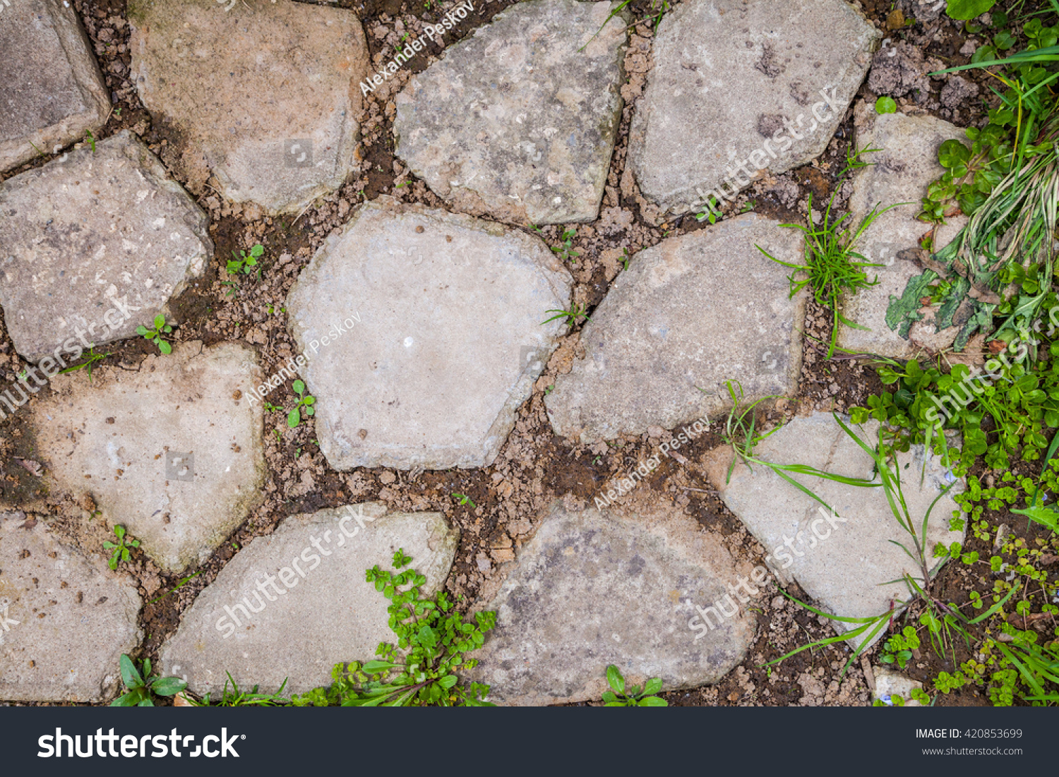 Stone Blocks For Decorative Garden Path With Grass And Ground. Brick  Concrete Tile For Tracks