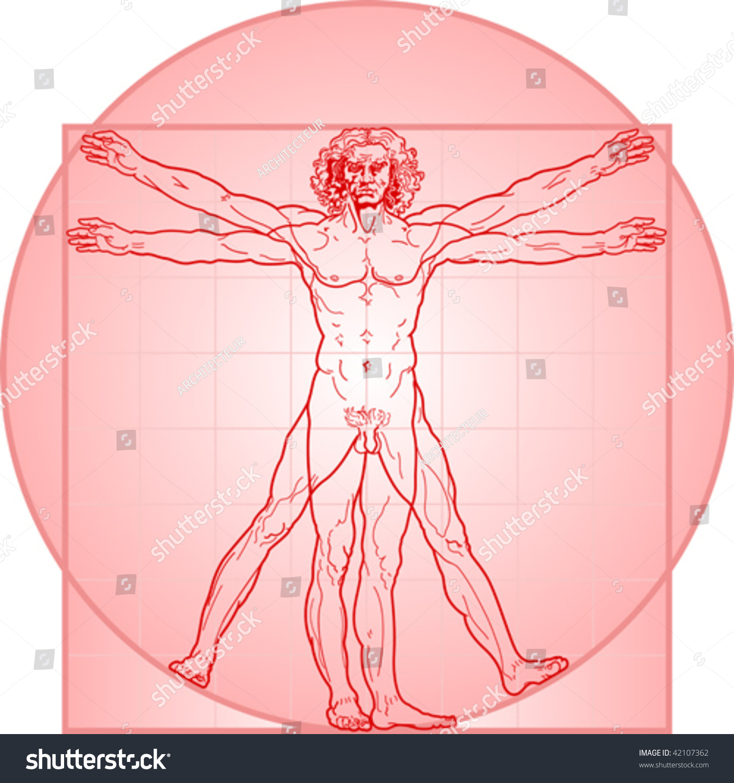 Vitruvian Man Called Leonardo Da Vinci Stock-Vektorgrafik ...