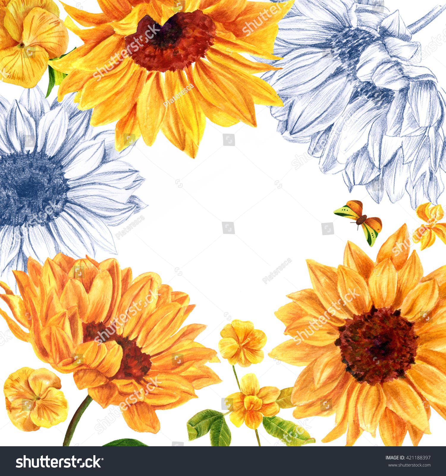 Frame watercolor pencil drawings yellow flowers stock illustration a frame of watercolor and pencil drawings of yellow flowers sunflowers violets and izmirmasajfo