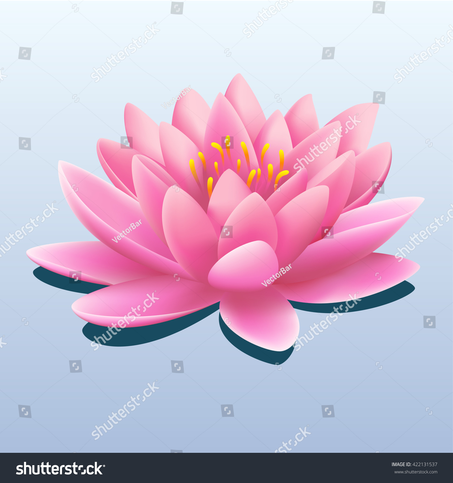 Pretty pink water lily lotus flower stock vector 422131537 pretty pink water lily or lotus flower with drop shadow over a gradient grey background dhlflorist Images