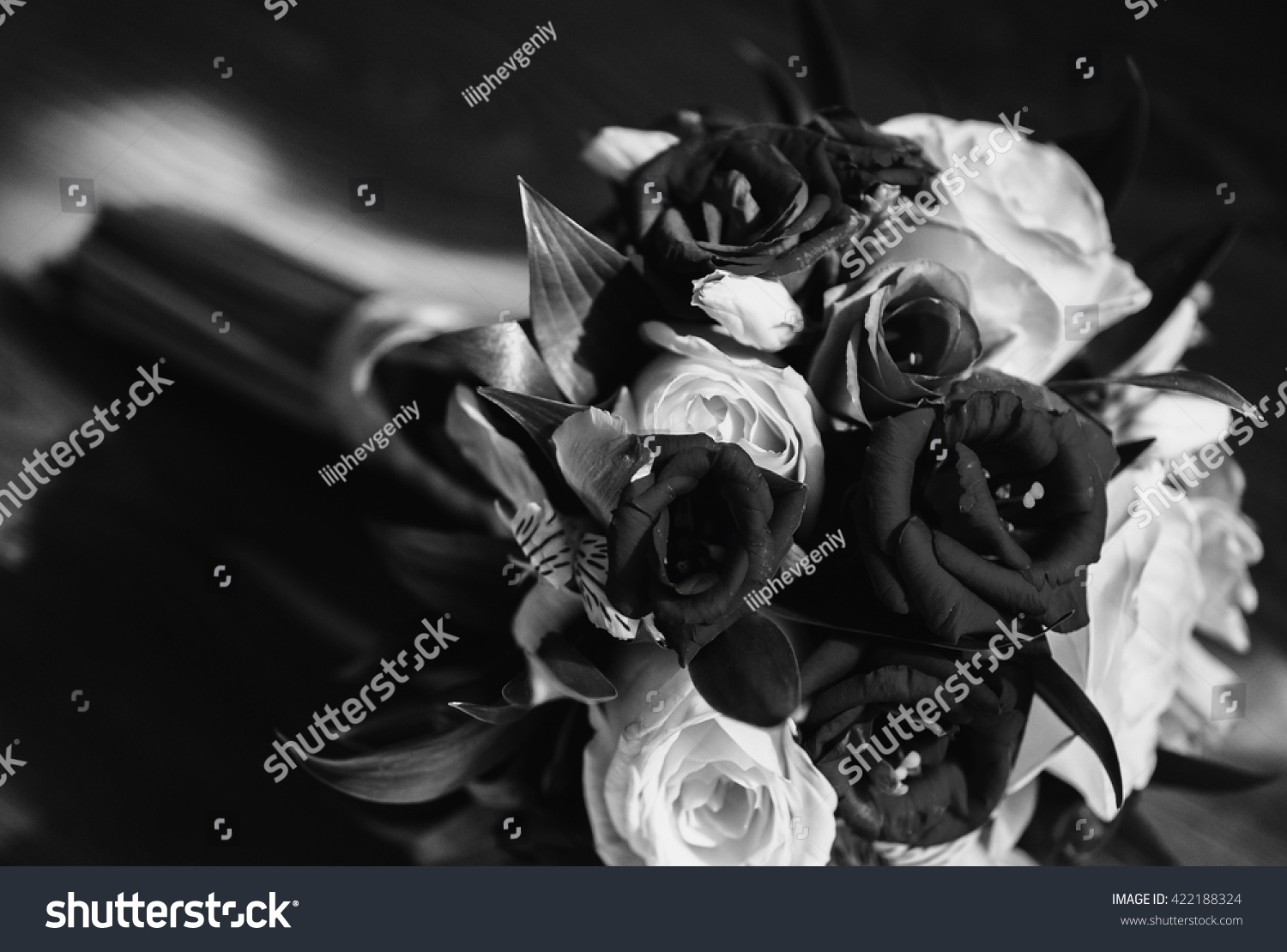 Black White Art Photography Monochrome Grayscale Stock Photo