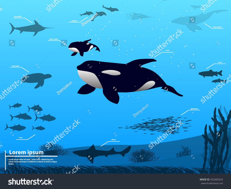 vector illustration infographics ocean sea underwater stock vector